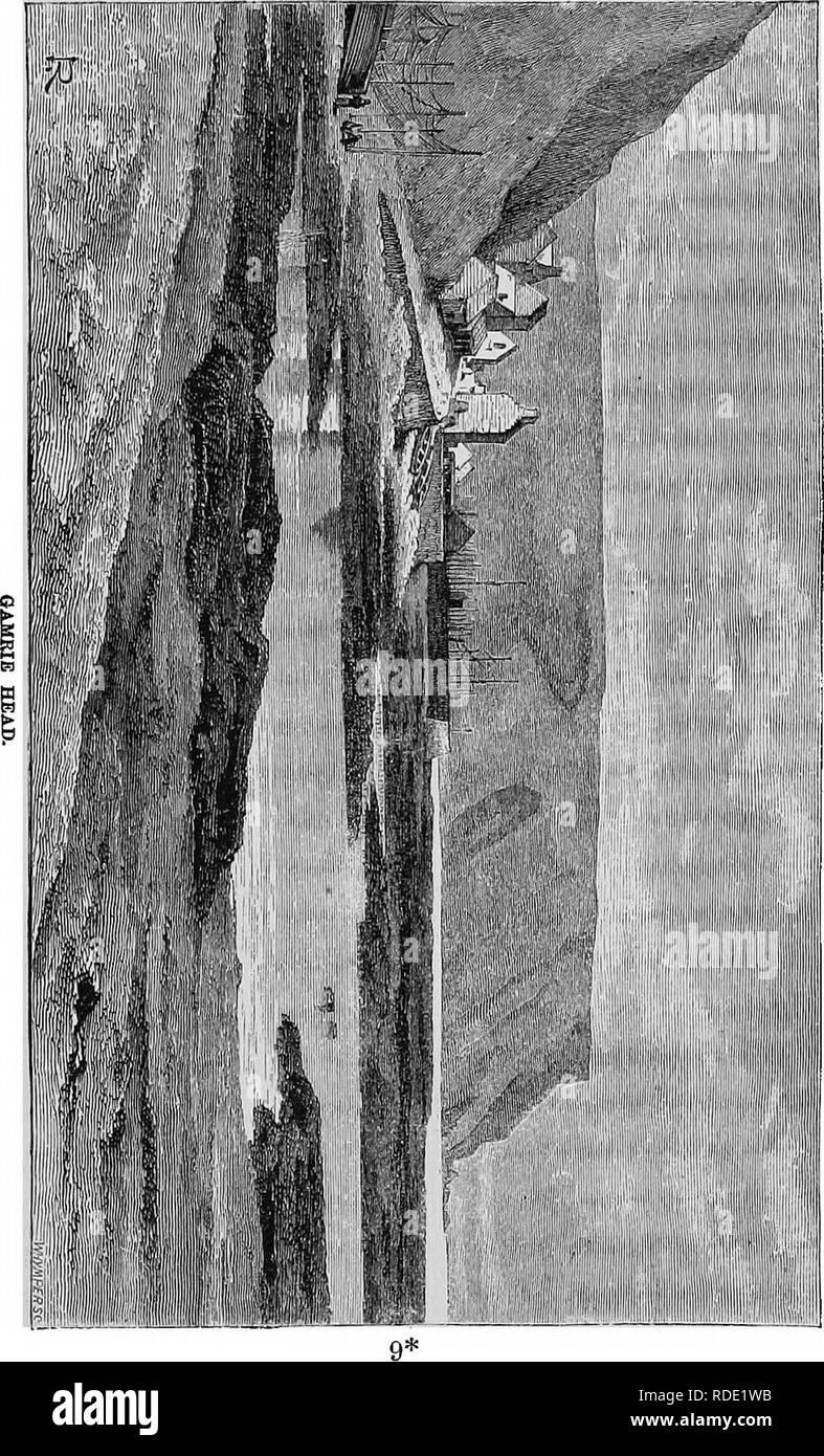 . Vie d'un naturaliste écossais: Thomas Edward, associé de la Société linnéenne. . Veuillez noter que ces images sont extraites de la page numérisée des images qui peuvent avoir été retouchées numériquement pour plus de lisibilité - coloration et l'aspect de ces illustrations ne peut pas parfaitement ressembler à l'œuvre originale.. Sourires, Samuel, 1812-1904; Edward, Thomas, 1814-1886. New York, Harper & Brothers. Banque D'Images