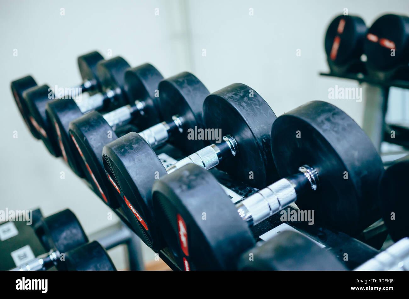 Haltères lourds métalliques pour la formation de poids sur le stand in gym Photo Stock