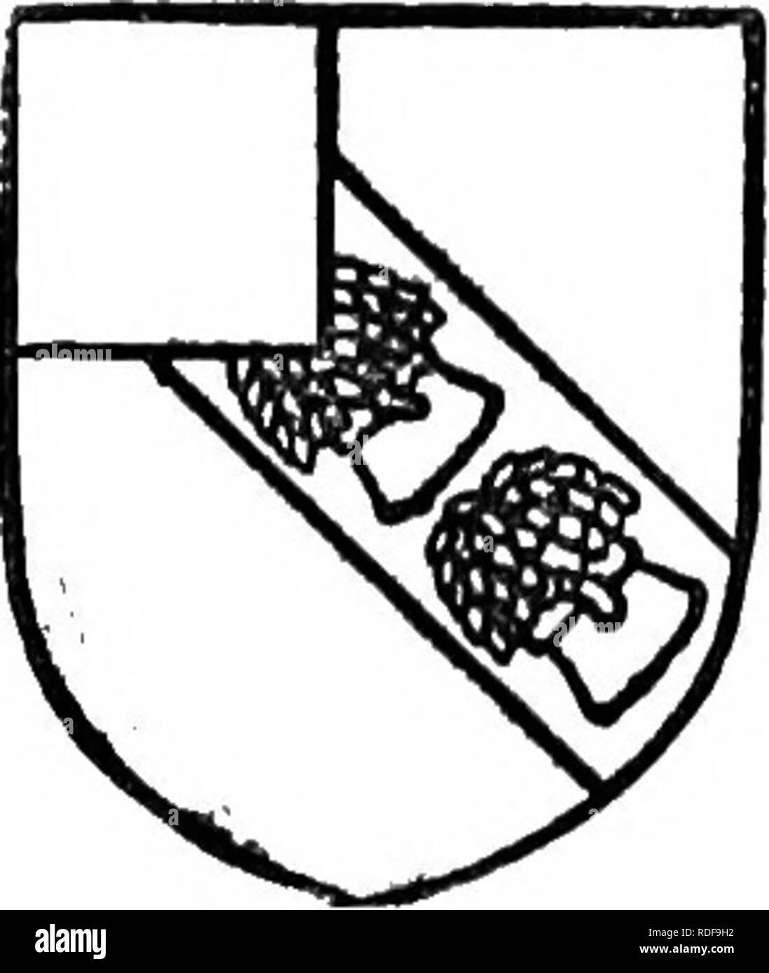 Vitesse datant tchécowice