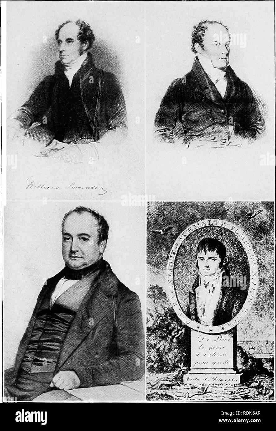 """. Audubon, le naturaliste; une histoire de sa vie et le temps. Audubon, John James, 1785-1851. wiijjam swaixsox; Ornithologists chari.es l. boxaparte E(""""IAS XL'RÉORIENTATION.L COXSTAXTIXE RAFIXESQL SWAtXSON S.'e' FROJt BIOCRAPITY SON OGISTS DE ZOOT.NTTTAFI FROlvr;, UN GRAVINC» DERBV EN'ATIÈRE, 1S^5; Bon'Aparte FR(m un PTroTOGRAl'ir' EN POSSESSION DE >IR. RFTirVEK IIEAN Prlir'E, premier.rsIIEI) dans """"CASSI N'n""""; et f'RAFINESOFE mCIIARI^J RO) er.t.SWORTII CAFE, *'u l'AFI N'ESorE."""". Veuillez noter que ces images sont extraites de la page numérisée des images qui peuvent avoir été retouchées numériquement pour rea Banque D'Images"""