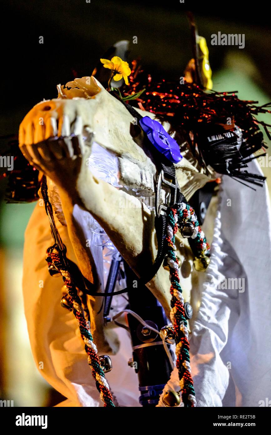 Sur la photo: a Mari Lywd. Les traditions anglaise et galloise de l'autre côté de la rivière Wye répondre à Chepstow. Le Mari Lwyd gallois et anglais Wassail tradition sont célébrés par une froide nuit de janvier. Les rues et les ponts ont été fermés comme des groupes ont dansé et chanté. Le mari est un cheval décoré scull prises de maison en maison, Wassailing est une tradition anglaise pour demander une bonne récolte. ©Crédit Mr Standfast / Alamy Live News Photo Stock