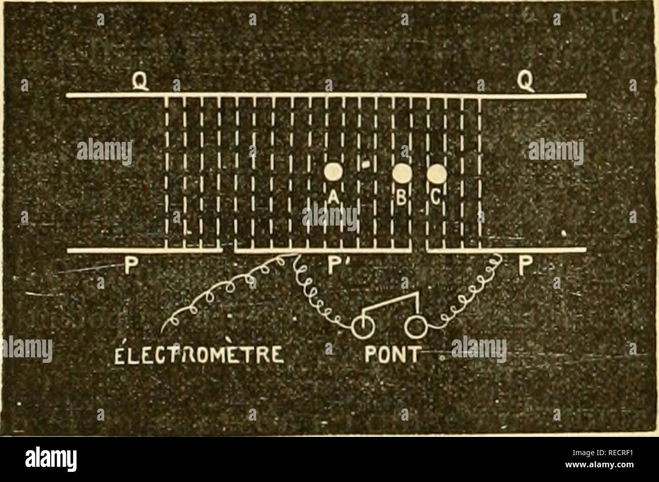 """. Comptesrendusheb1231181896acad. es naturelles. ( 35i ) PHYSIQUE. RÃ'le du diélectrique dans la décharge par les rayons de RÃ'ntgen. Remarque de M. Jean Perrin, présentée par M. Mascart. &Lt;( En étudiant la décharge d'un corps électrisé par les rayons de Rontgen, on peut y dégager un phénomà ne¨qui précise le rÃ'le du diélectrique envi- ronnant. J'ai déjà publié sur ce point quelques résultats qualitatifs; après les avoir résumés, j'aborderai ici l'étude de ce quantitative phénomène. Â"""" I. Il est facile de vérifier que les rayons X peuvent décharger en quelques secondes Banque D'Images"""