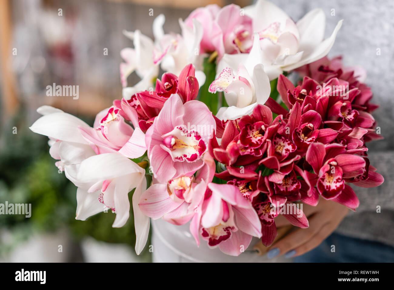 Orchidee Wanda Japonais Dans Des Vases De Metal Dans Les