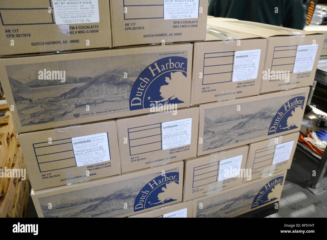 Une mini boîtes empilées avec des filets de goberge congelés à l'usine de fruits de mer UniSea Dutch Harbour, île Unalaska, Alaska, United States. Photo Stock