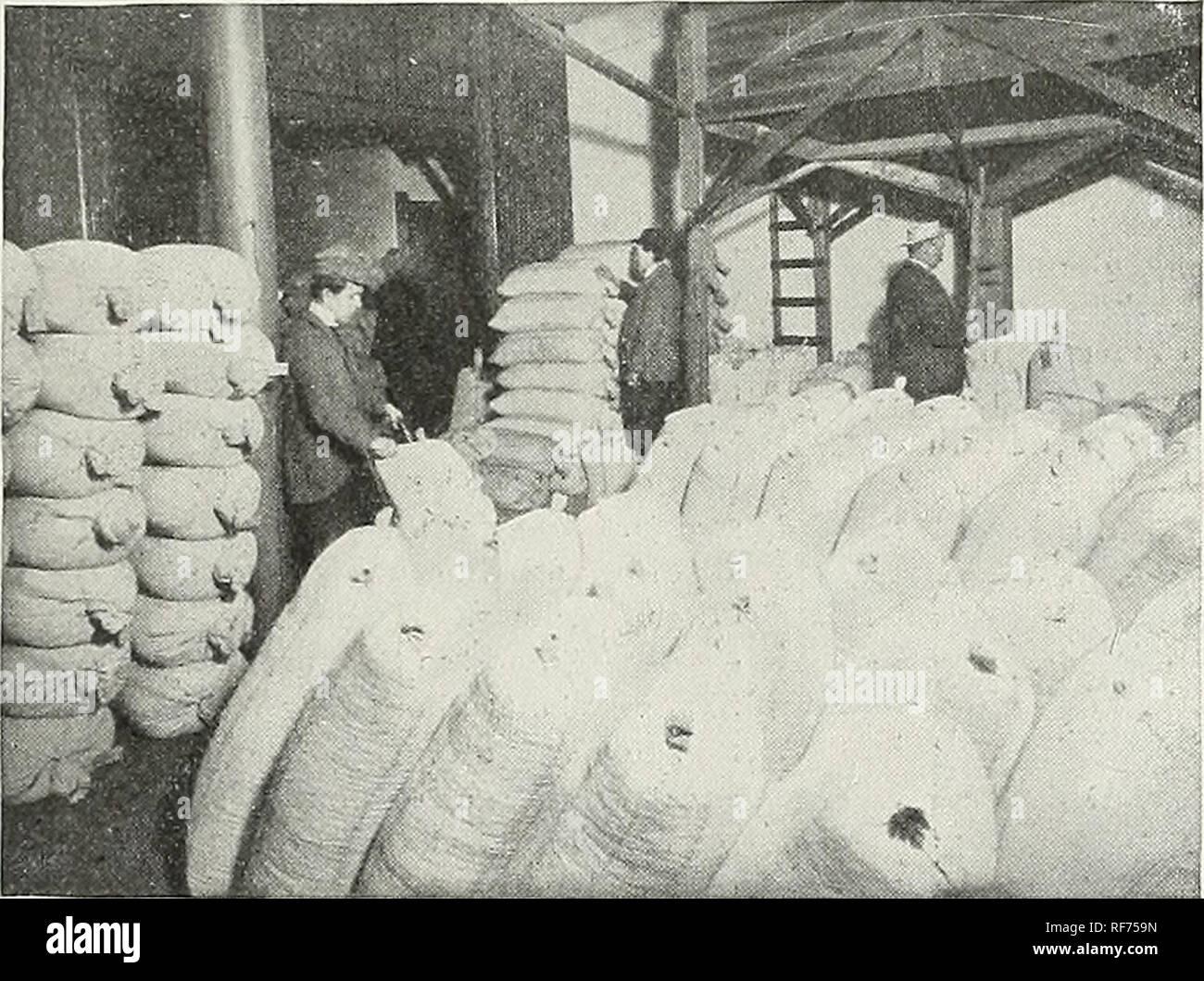 """. Alfred J. Brown Seed Co.: producteurs, négociants et importateurs. Grand Rapids Michigan pépinière; catalogues de semences de légumes, graines de fleurs Catalogues Catalogues. Prix LA VÉRITÉ SUR LES GRAINES.. Il y a par- pad un peu de gens dans le commerce des semences qui continuent de ternir les semenciers qui s'efforcent de faire une entreprise légitime. Le plus souvent, vous trouverez de telles personnes sont comme """"bon marché"""" que les graines qu'ils vendent. L'homme sage qui a la récolte en vue sait très bien ce que c'est de planter des graines de caractère douteux. Plusieurs fois, un ensemble de la saison est perdue, l'argent et de temps perdu, par la plantation de s Photo Stock"""