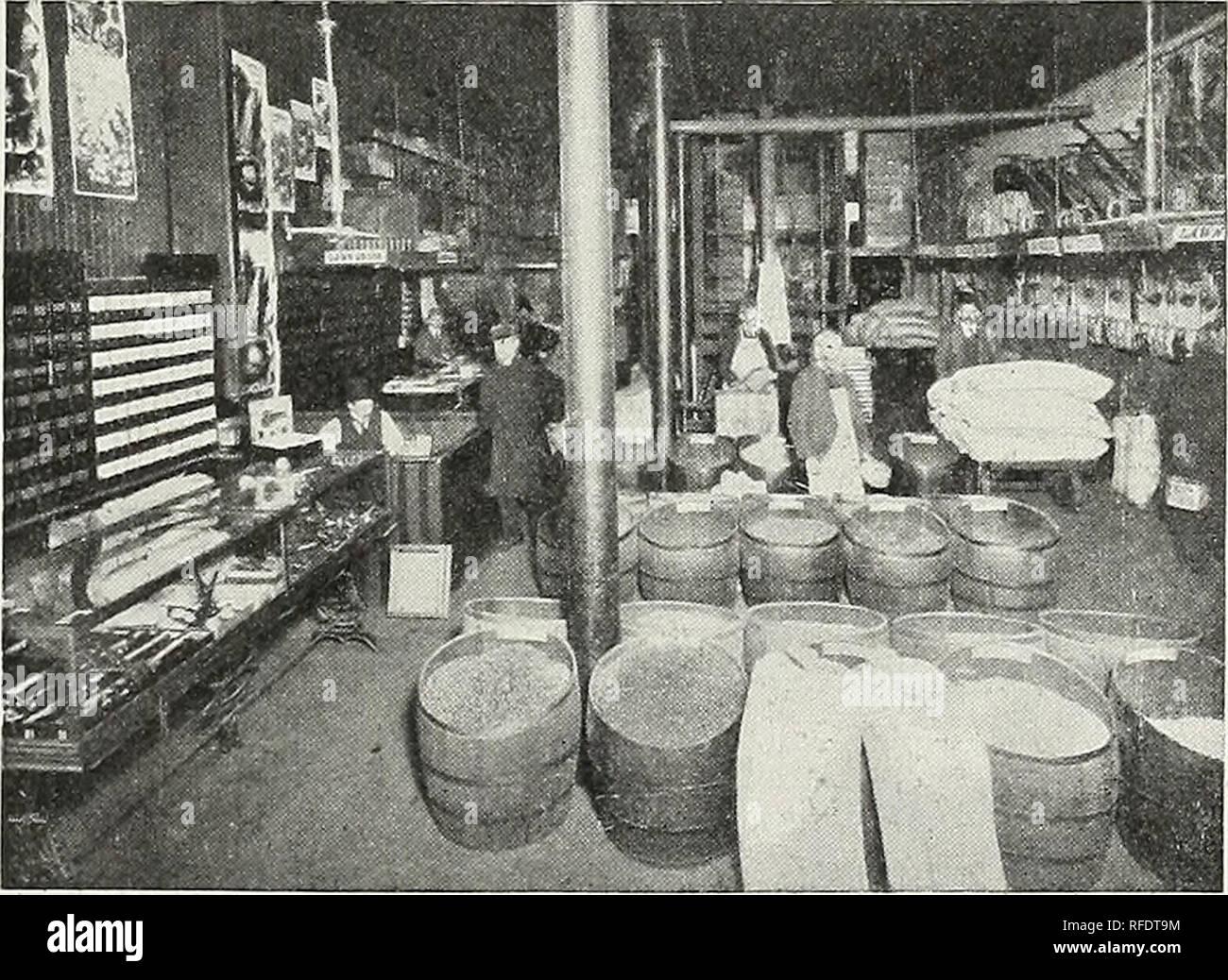 """. Alfred J. Brown Seed Co.: producteurs, négociants et importateurs. Grand Rapids Michigan pépinière; catalogues de semences de légumes, graines de fleurs Catalogues Catalogues. Il y a par- pad un peu de gens dans le commerce des semences qui continuent de ternir les semenciers qui s'efforcent de faire une entreprise légitime. Le plus souvent, vous trouverez de telles personnes sont comme """"bon marché"""" que les graines qu'ils vendent. L'homme sage qui a la récolte en vue sait très bien ce que c'est de planter des graines de caractère douteux. Plusieurs fois, un ensemble de la saison est perdue, l'argent et de temps perdu, par la plantation de graines qui vous ont peut-être raison Photo Stock"""