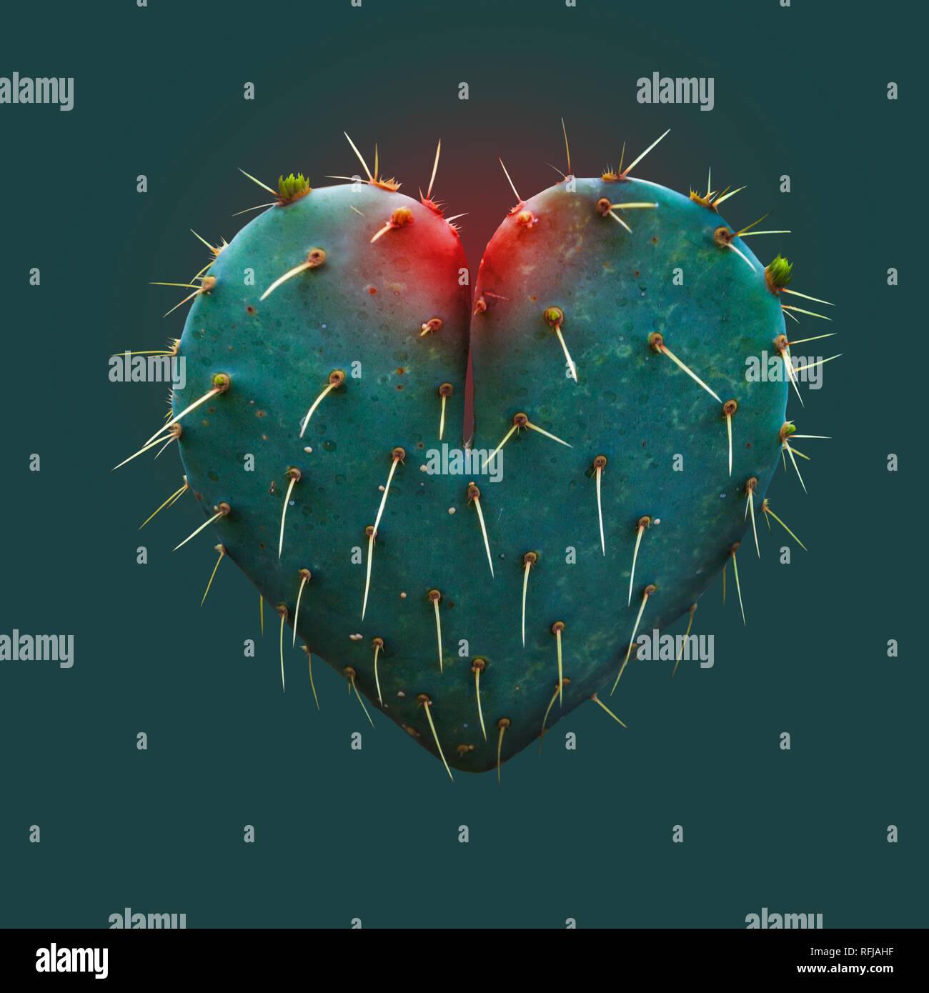 Feuilles de cactus en forme de Cœur - symbole de l'amour - l'espoir - Concept Photo Stock
