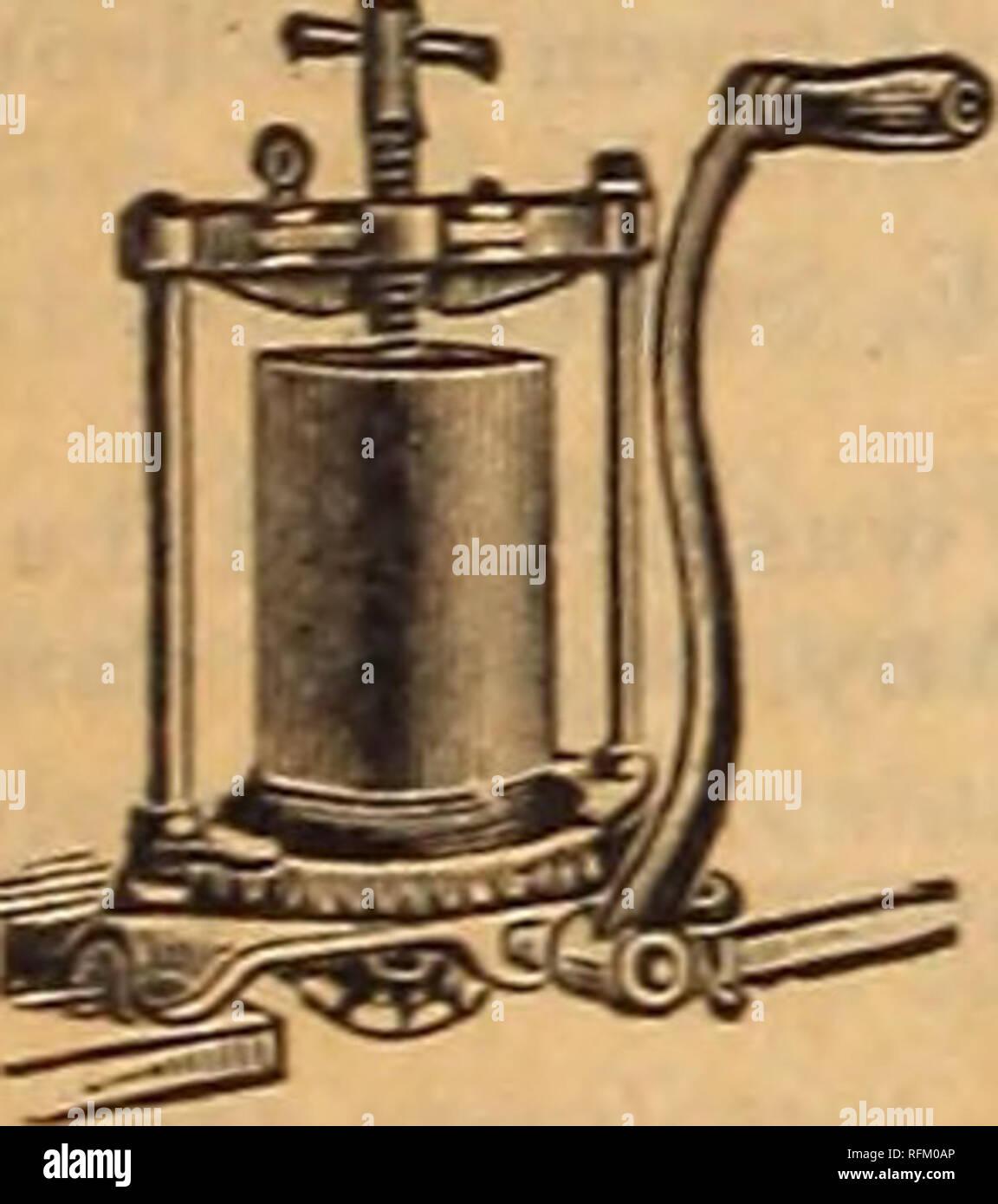 Brunette pipe lente