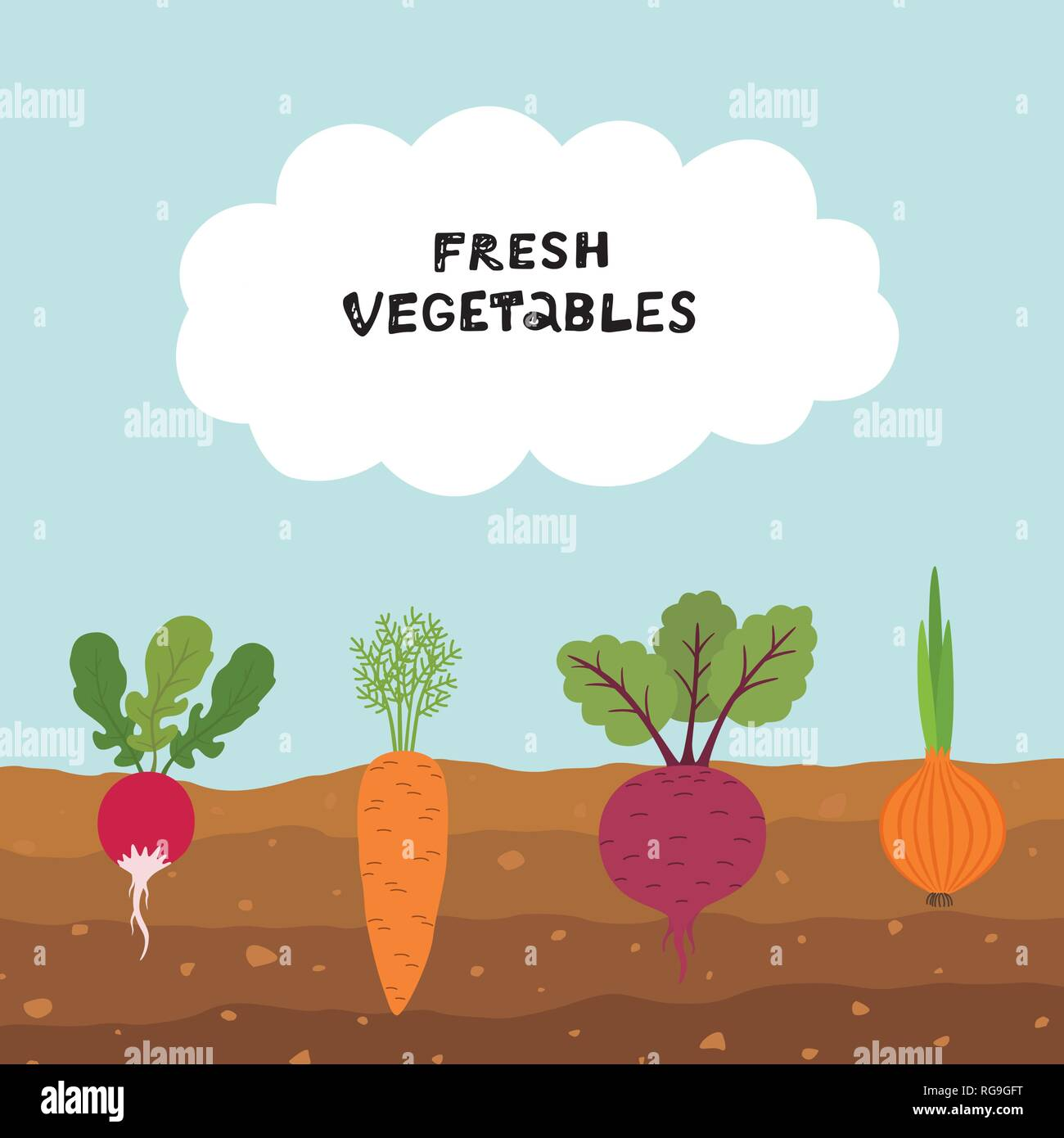 Legumes A Mettre Dans Le Jardin jardin de légumes biologiques frais sur fond de ciel bleu