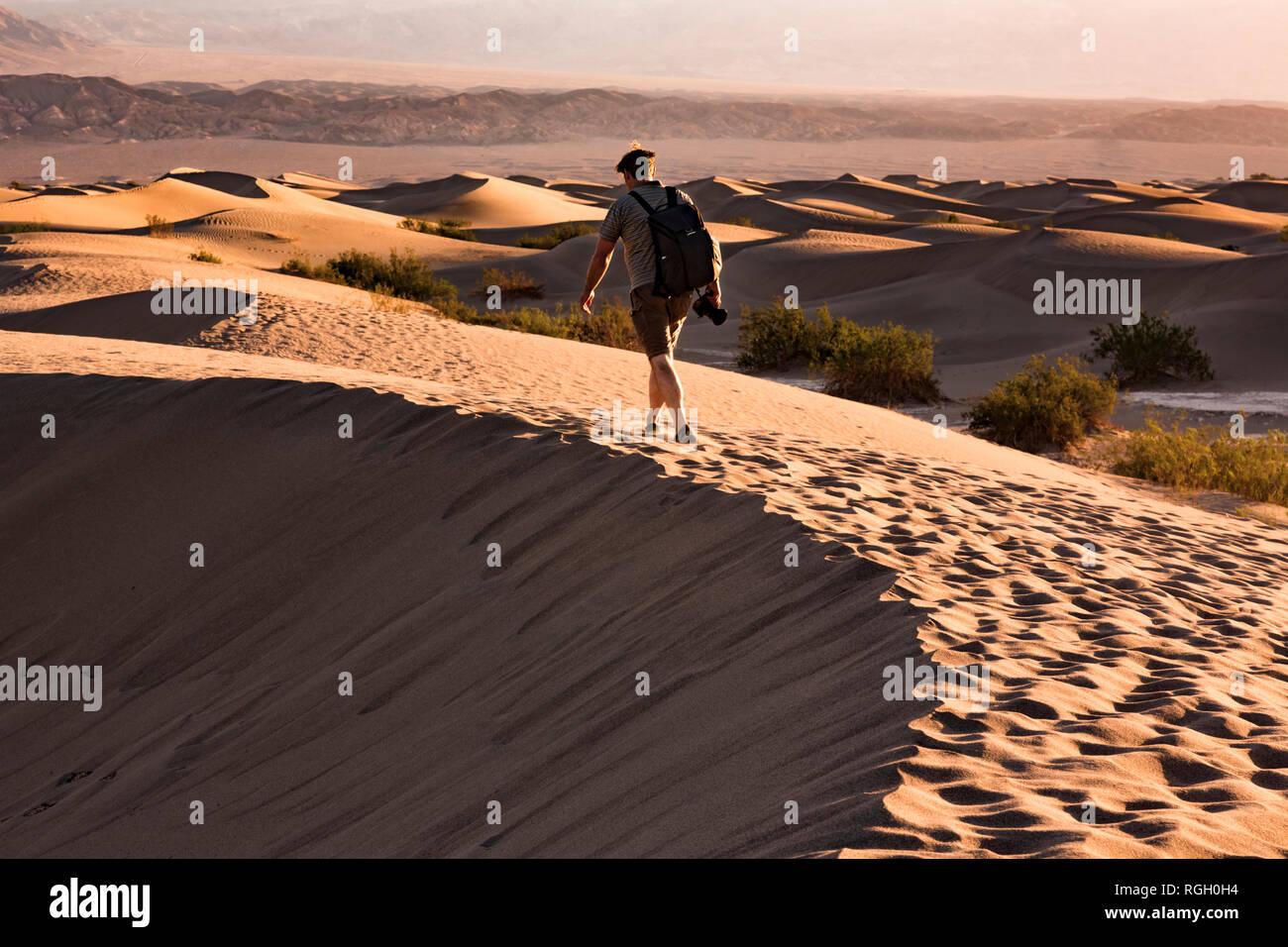 USA, californien, la vallée de la mort, Death Valley National Park, Mesquite Flat dunes de sable, l'homme marche sur dune Banque D'Images