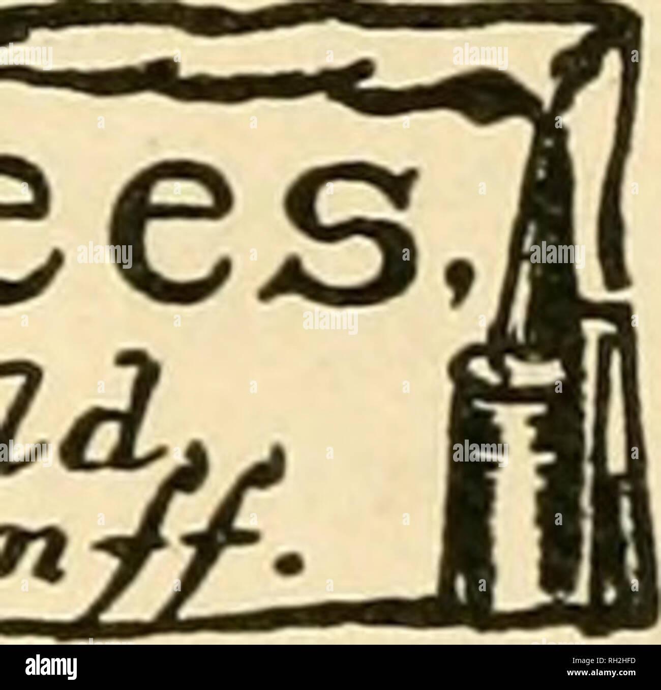 . British bee journal &AMP; conseiller les apiculteurs. Les abeilles. 112 LE BRITISH BEE JOURNAL. [Mars 19, 1914. l'extérieur du comté, mais d'obtenir tous les requis de ceux à l'intérieur. M. Pugh a proposé une motion de remerciements chaleureux à l'adjoint au maire pour présider la réunion. M. Ellis appuyée, et elle a été menée avec acclamation. M. Ward, en réponse, a dit combien il était heureux de pouvoir une fois de plus pour être avec eux parce qu'il a vu qu'ils faisaient tout ce qu'ils pouvaient en tant qu'Association pour faire avancer l'industrie de l'apiculture, et n'importe qui pouvait voir sur le rapport d'analyse avec soin et le bilan qu'une larg Photo Stock