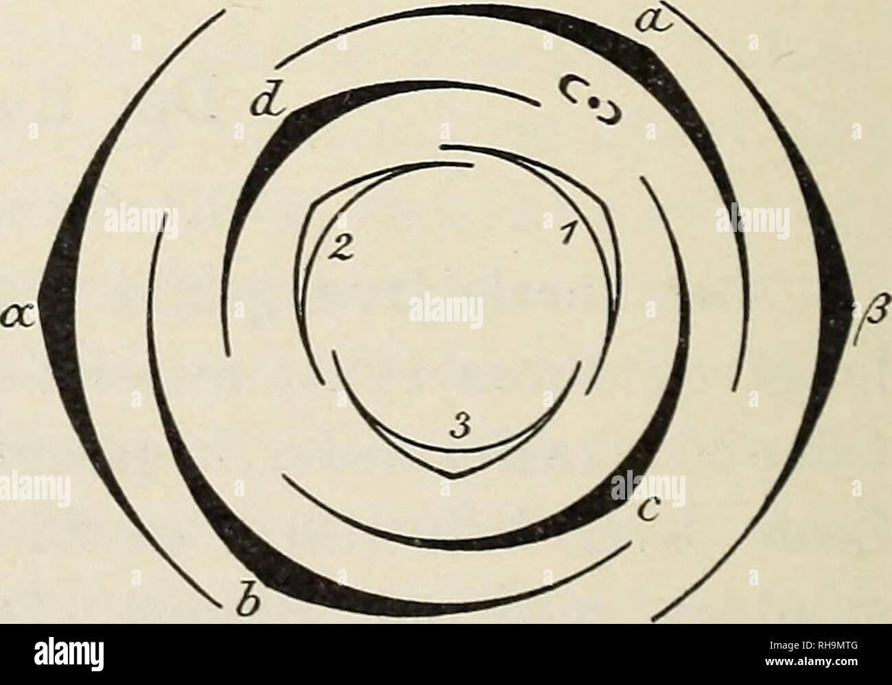 indre cirkel dating nl cs gå matchmaking server ip