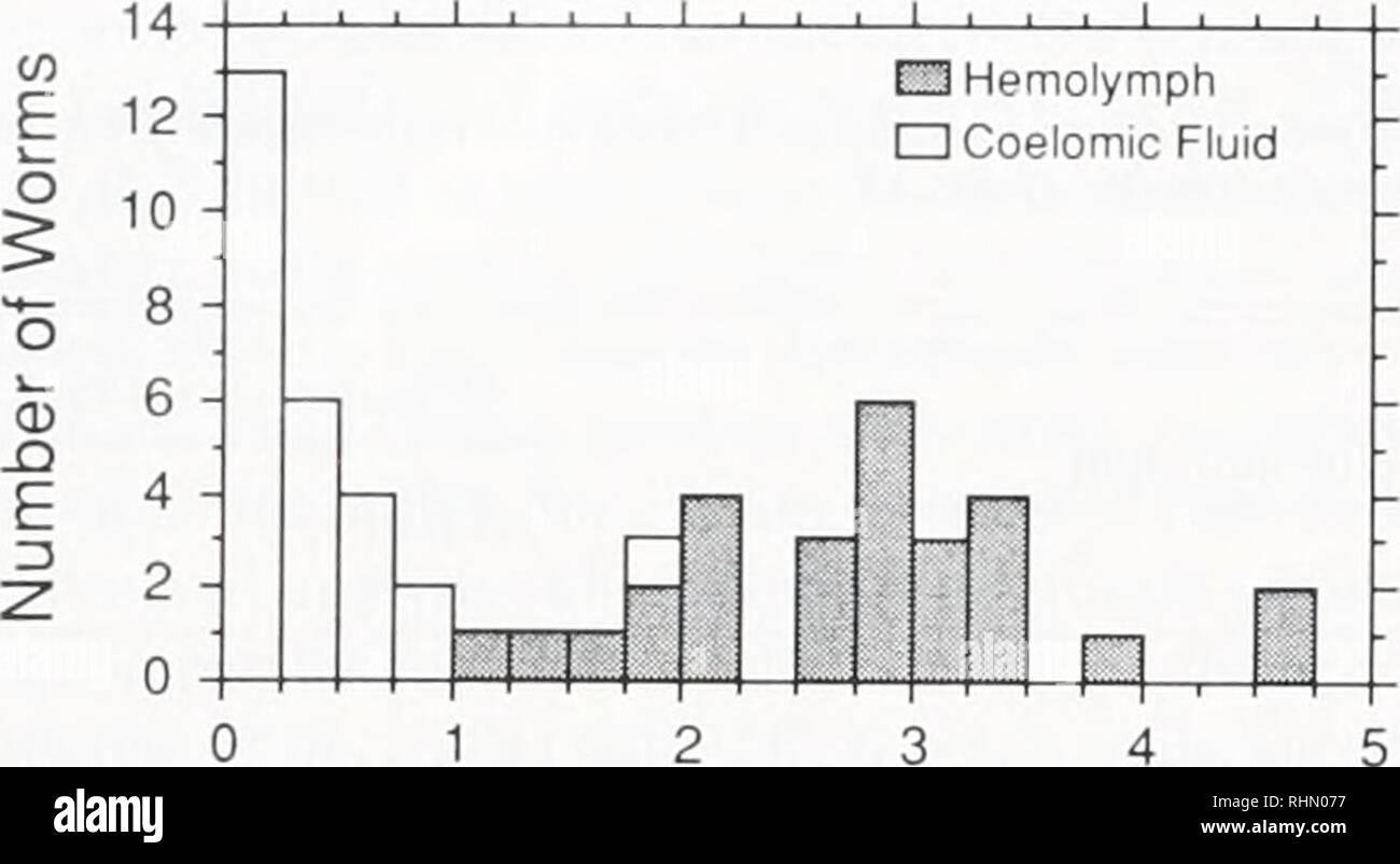 """. Le bulletin biologique. Biologie; zoologie; biologie; biologie marine. 142 J J. CHILDRESS ET AL. Je Fraction de l'hémoglobine (mM) Figure 2. Distributions de fréquence des concentrations d'hémoglobine le grand [FI, 1,7 x 10"""" M., (coll. el Terwilliger 1980; el Arp en.. 1987)] dans du fluide cœlomique et l'hémolymphe de Ri/pachvptila tia maintenu pendant 24 h à différentes concentrations et d sultide externe. 1.2 - O °8 H 'E ° 0,4 H 01 o - y = 00133*0 176 x . R= 090 46 810 XH2S'hémolymphe (mM) 12 Figure 3. Le liquide cœlomique -H,S en fonction de l'hémolymphe iH:S dans pachypltla Rifia maintenu pendant 24 h à différents su externe Banque D'Images"""