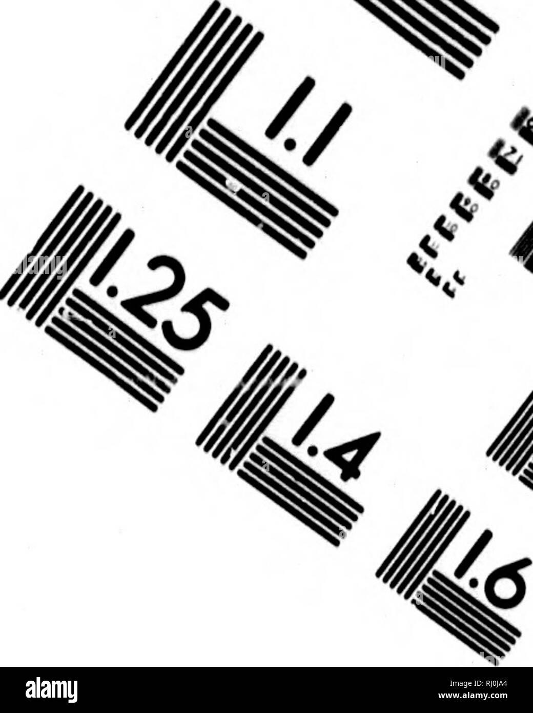""". Feuilles d'érable [microforme]: un budget du légendaire, historique et critique, l'intelligence sportive. Jeu et jeu-oiseaux, gibier. TEST D'ÉVALUATION D'IMAGE CIBLE (MT-3) // .^4^' '""""^S^^* fe"""" &gt;,^ . '^^^ 1. •^ 1.0 1.1 1^^ J Hi 2.2 mauvais 12,0 1,8 L25      _^^ j V] ^3 'V '^&gt; 7: y. Veuillez noter que ces images sont extraites de la page numérisée des images qui peuvent avoir été retouchées numériquement pour plus de lisibilité - coloration et l'aspect de ces illustrations ne peut pas parfaitement ressembler à l'œuvre originale.. Le Moine, J. M. (James MacPherson), Sir, 1825-1912. Québec: Imprimé pour l'auteur par Hunter, Ros Banque D'Images"""