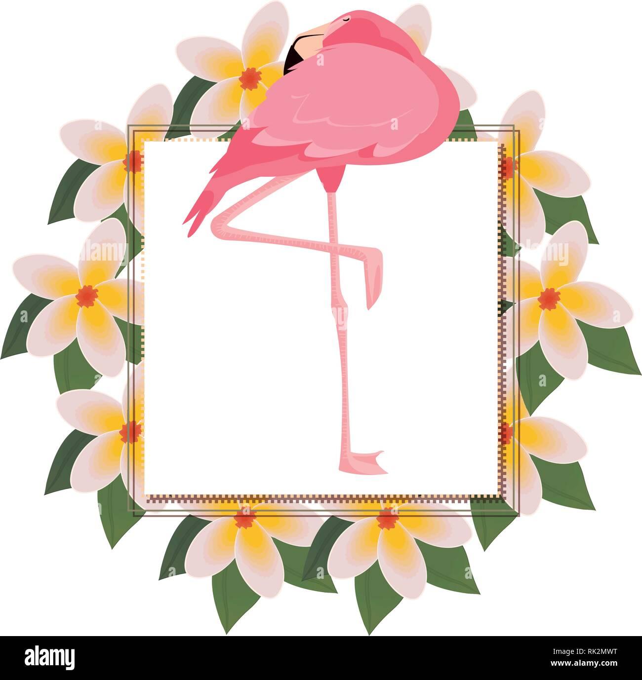 Flower Wreath Illustration Photos Flower Wreath Illustration