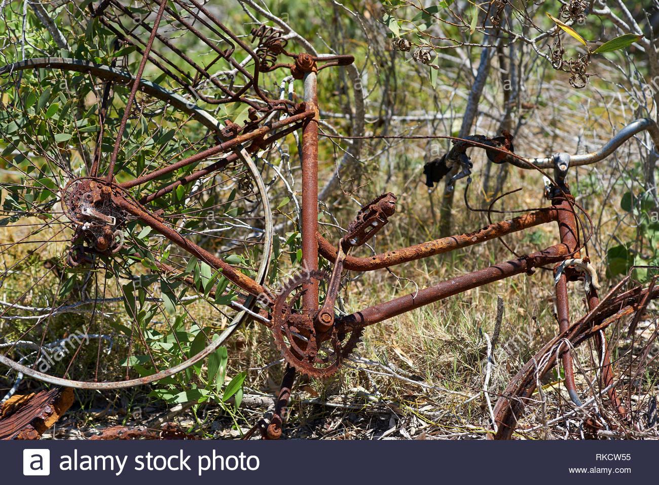 Un vieux et négligé, cassée et Rusty mesdames location, suspendu par la flore côtière grandir à travers elle, la corrosion dans le rude environnement salé. Banque D'Images
