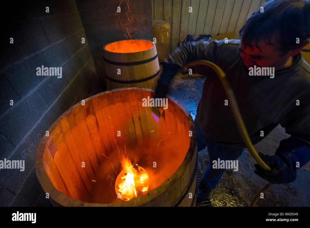 La France, l'Occitanie, Gers, au ''Tonnellerie de L'Adour'' à Plaisance du Gers. Préparation des fûts pour le vieillissement de l'Armagac. Photo Stock