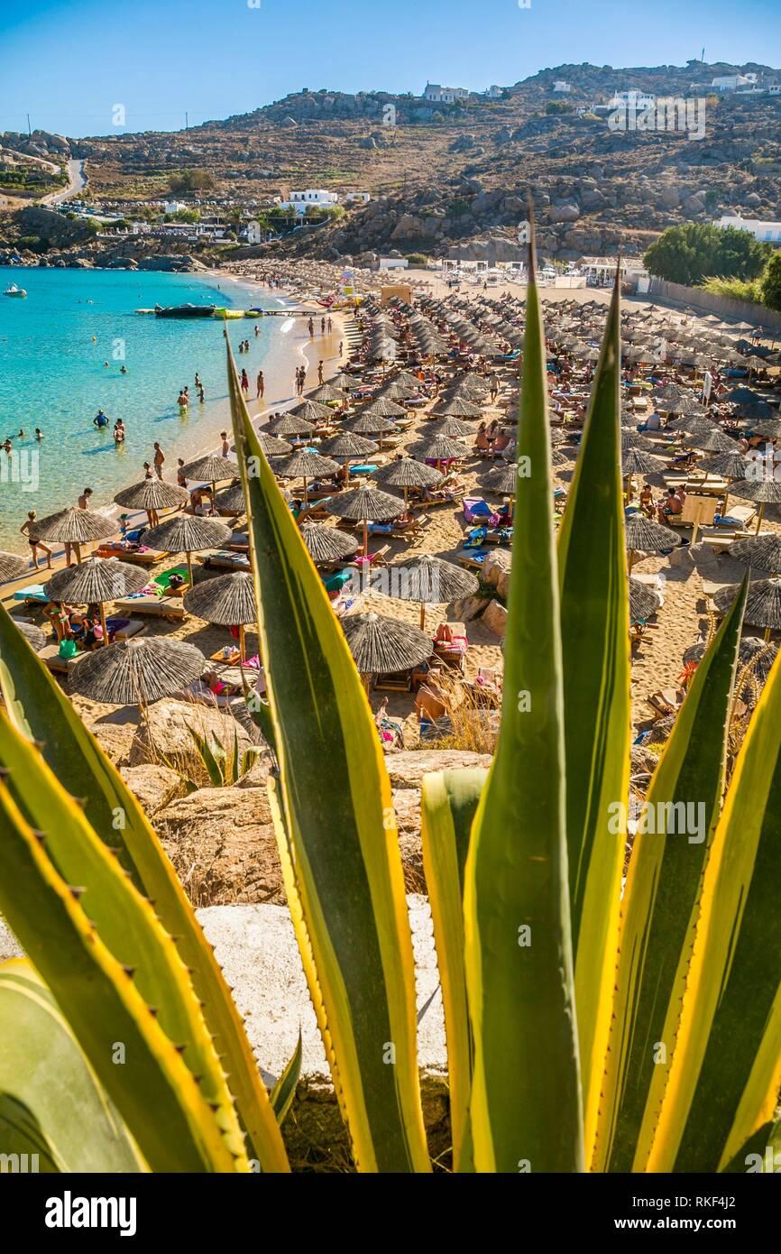 Super Paradise Beach. L'île de Mykonos. Ciclades Îles. La Grèce. Photo Stock