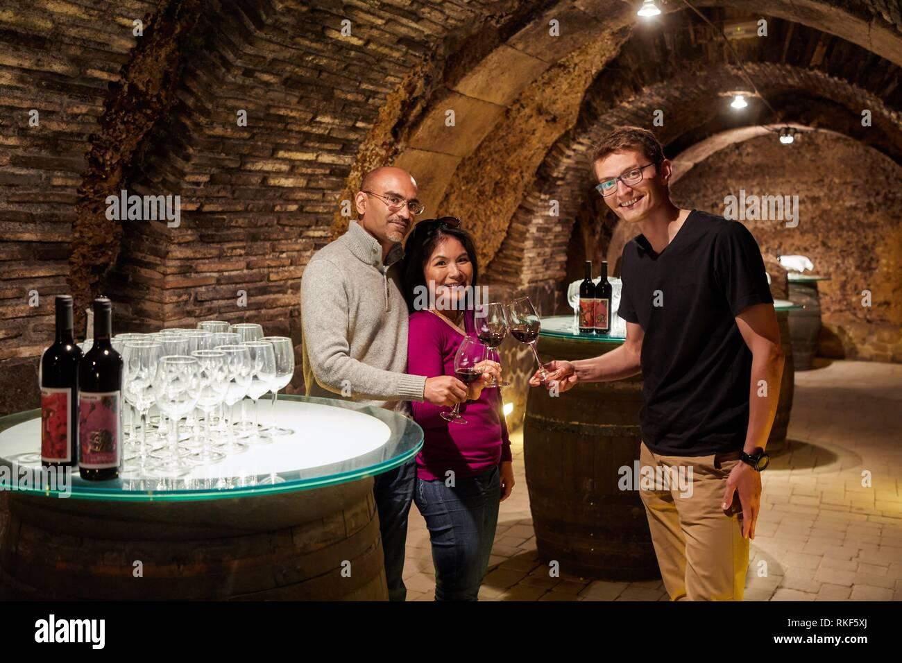 Guide avec les touristes, dégustation de vin, cave à vin, Rioja Alavesa, Alava, Pays Basque, Espagne, Europe Banque D'Images