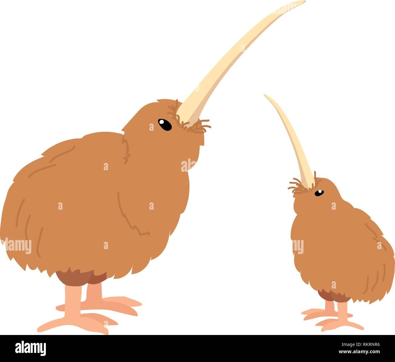 Vector cartoon animal kiwi oiseau sans ailes clipart Photo Stock