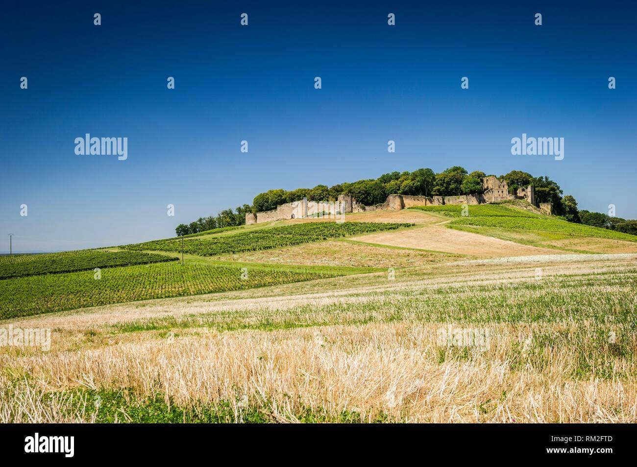 Voir D Arlay Chateau Departement Du Jura La Region De Bourgogne Franche Comte France Photo Stock Alamy