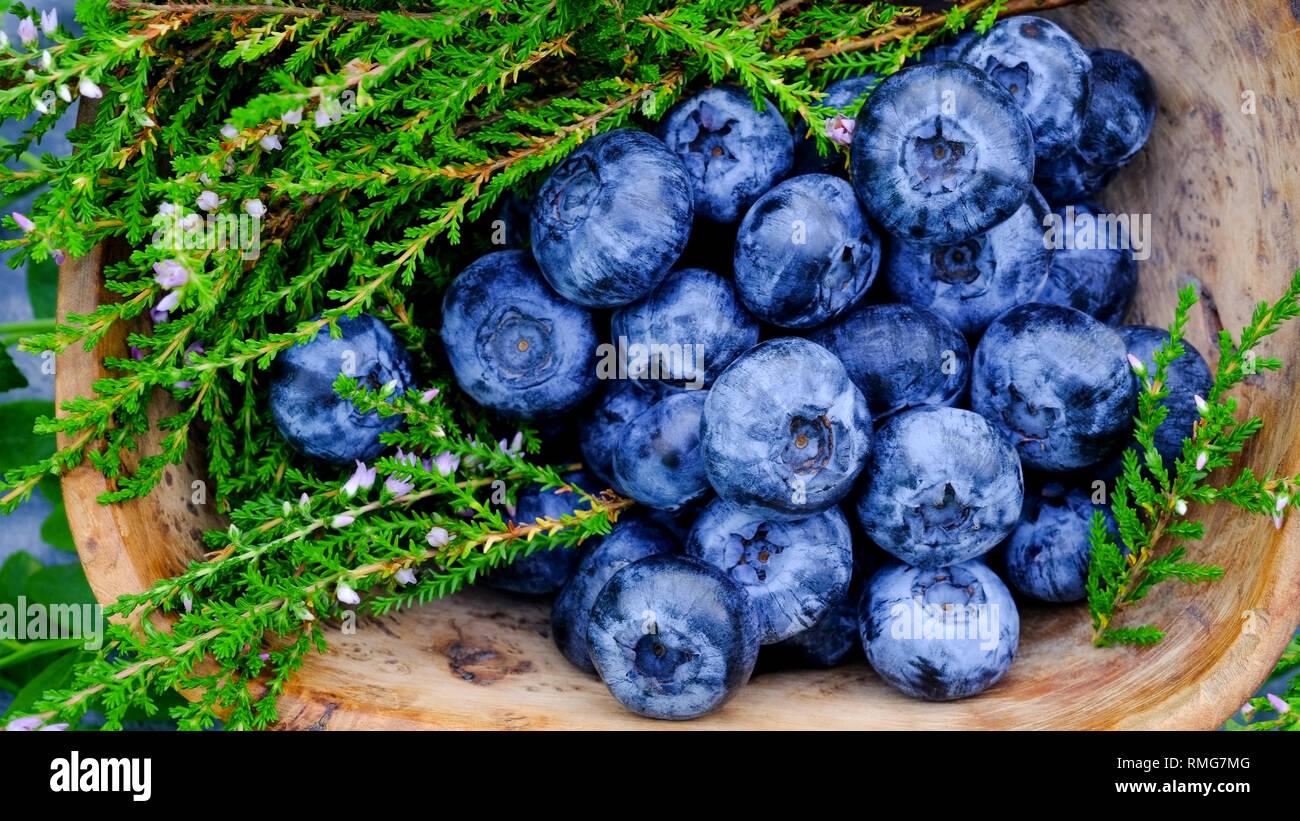 Antioxydants bleuets super aliments contenant de la Laponie. Petits fruits antioxydants dans un bol en bois de bouleau frisé Photo Stock