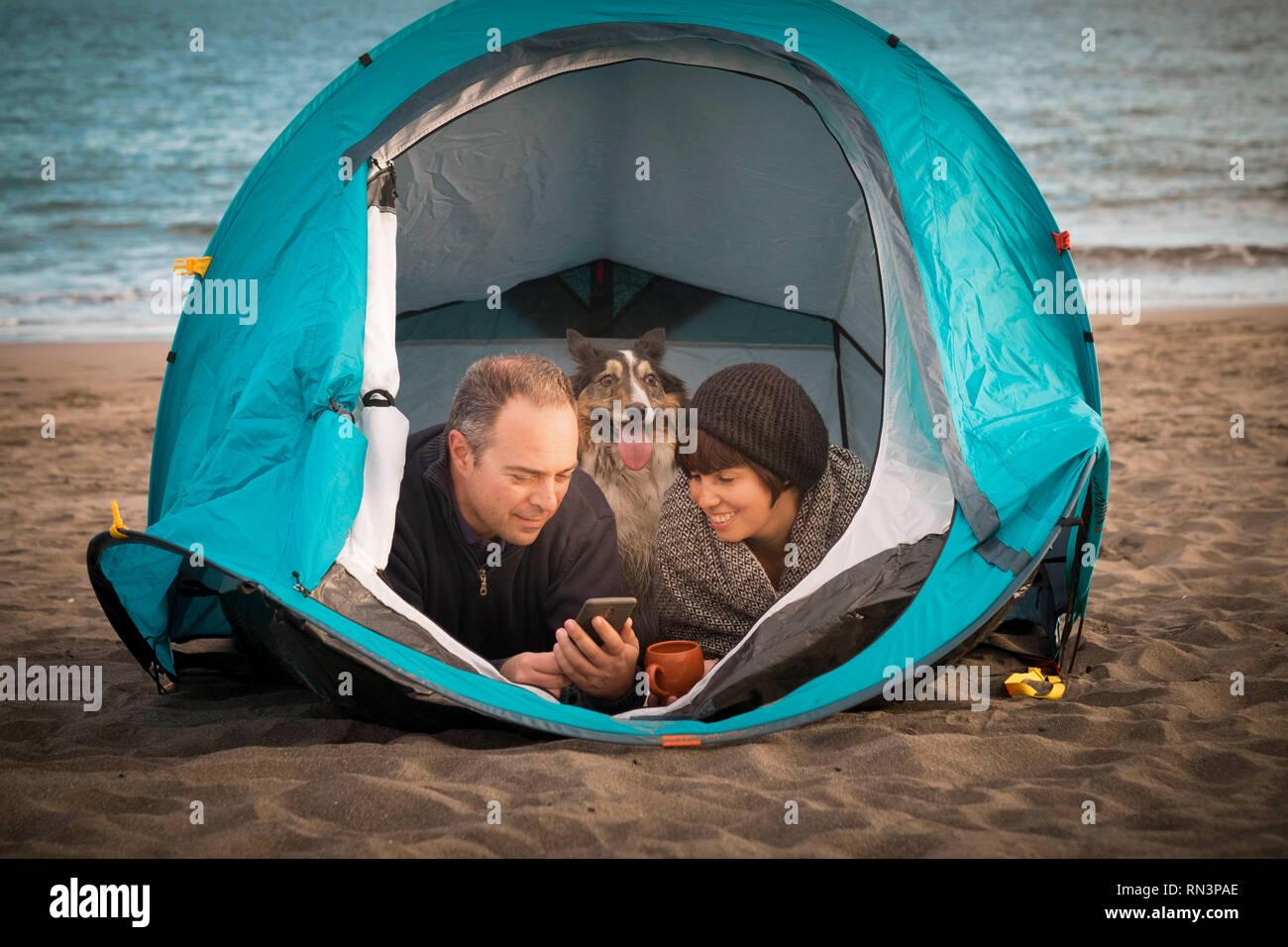 Couple le téléphone intelligent et avoir du plaisir à l'intérieur d'une tente dans un camping sur la plage chien border collie derrière eux regardant la caméra. Banque D'Images