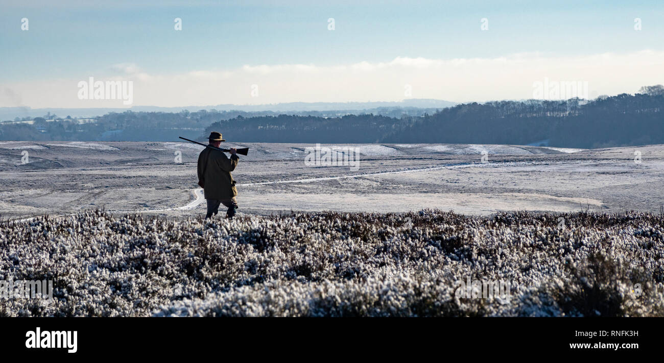 Hunter sur le Tétras des North York Moors en hiver Photo Stock