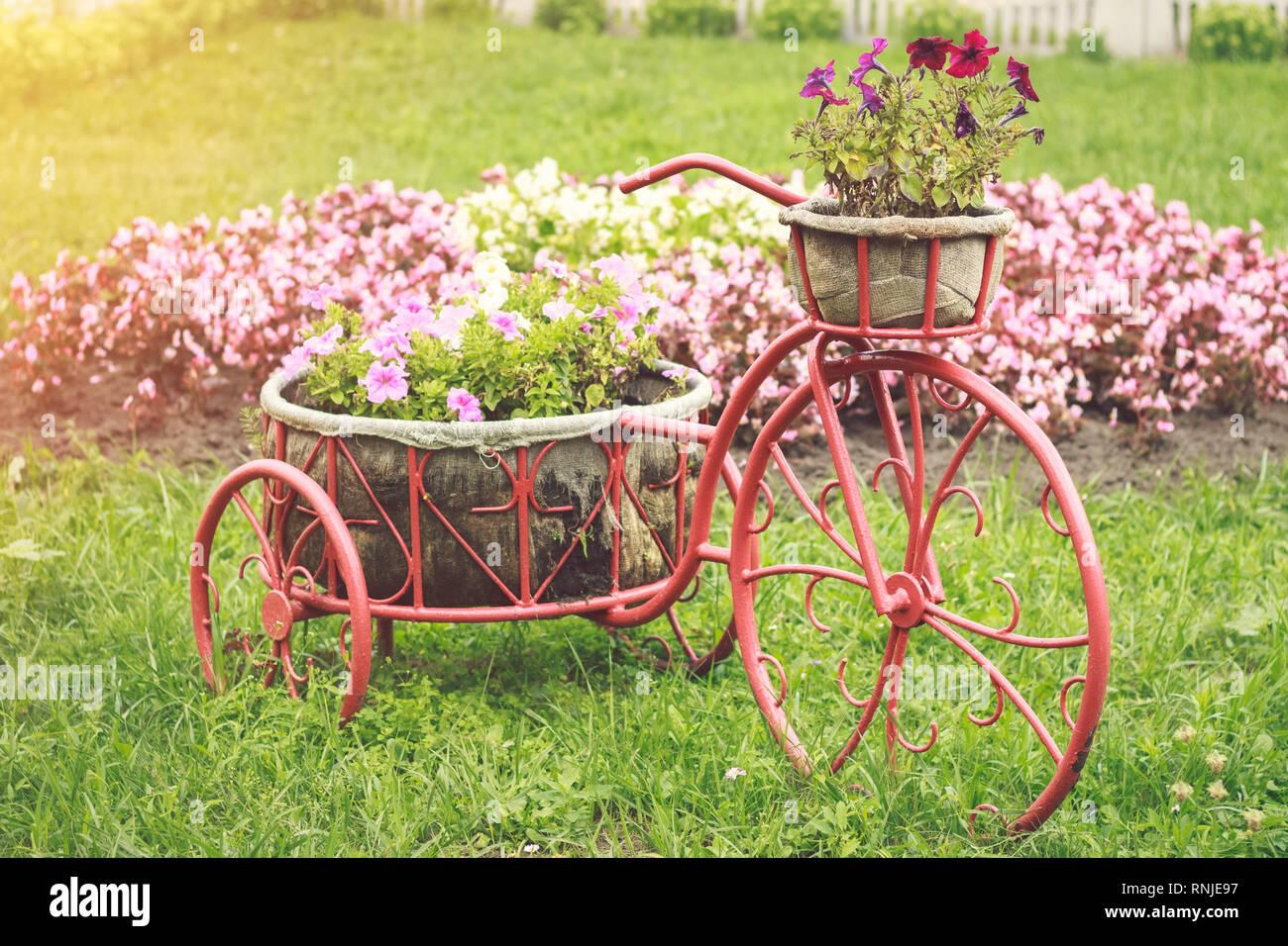 Décoration de jardin avec fleurs sous la forme d\'un vélo rétro ...