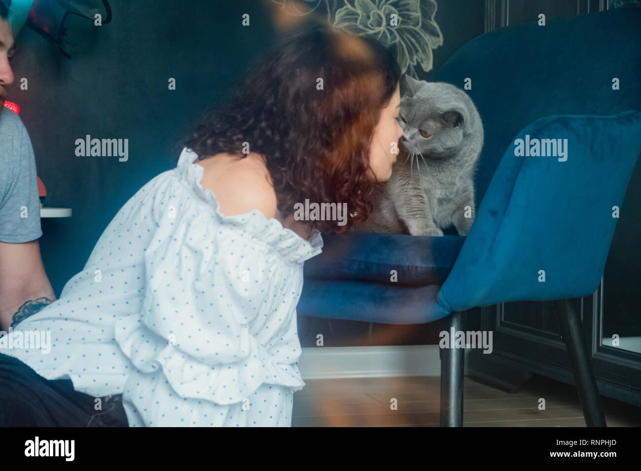 Close-up curly mignon jeune femme en chemise blanche embrassant un British cat sur son nez Banque D'Images
