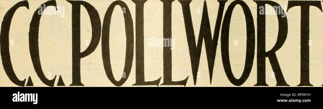 . La fleuriste américain: un journal hebdomadaire pour le commerce. La floriculture; fleuristes. 966 l'American Fleuriste. Ijt mai. Veuillez noter que ces images sont extraites de la page numérisée des images qui peuvent avoir été retouchées numériquement pour plus de lisibilité - coloration et l'aspect de ces illustrations ne peut pas parfaitement ressembler à l'œuvre originale.. Fleuristes américains Company. Chicago: Société Fleuriste Photo Stock