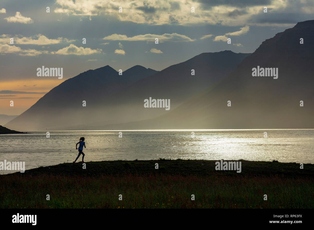 Piscine runner découpé sur Dynjandisvogur, Arnarfjordur, fjord, Islande Westfjords. Photo Stock