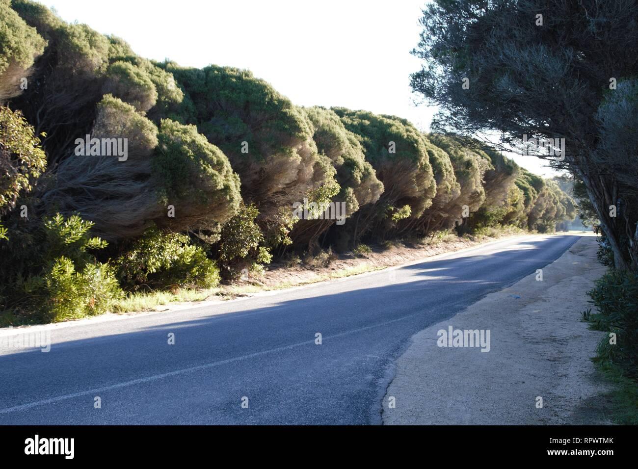 Gumtree datant de Tasmanie Regina rencontres websites in