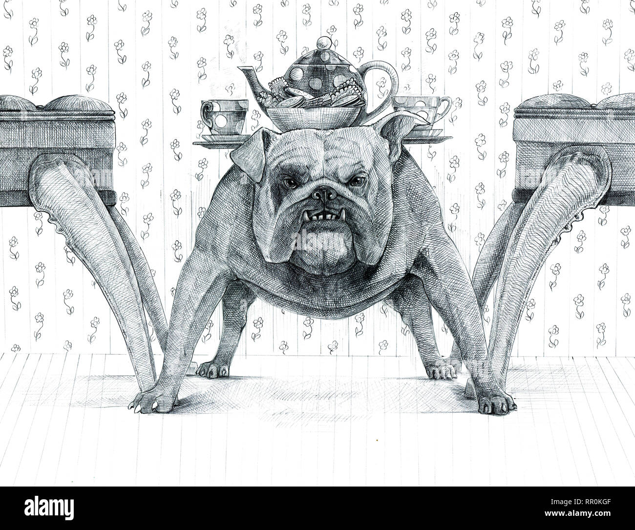 Coloriage Bouledogue Anglais.Dog Drawing Photos Dog Drawing Images Alamy