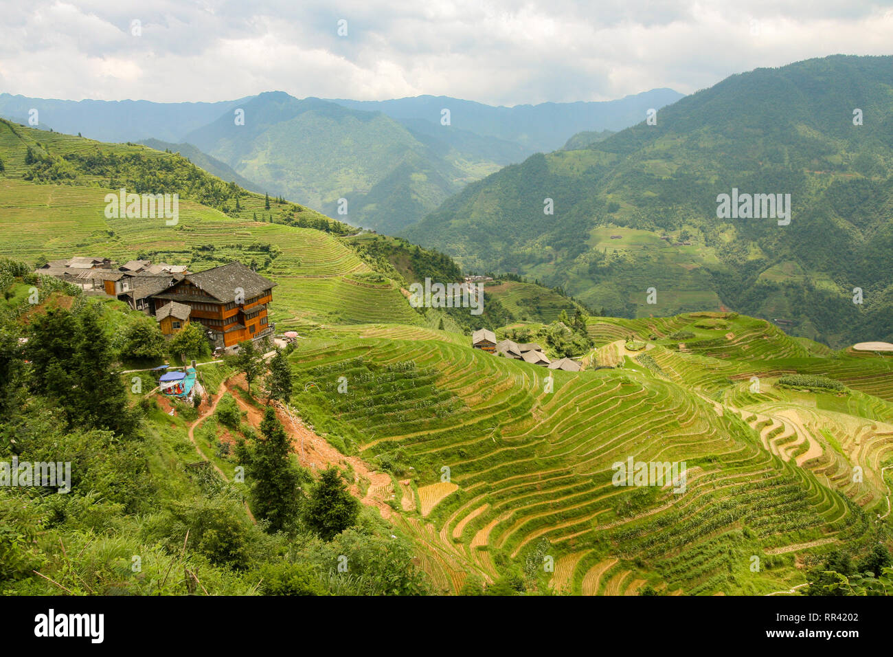 Longsheng rizières en Chine paysage Photo Stock