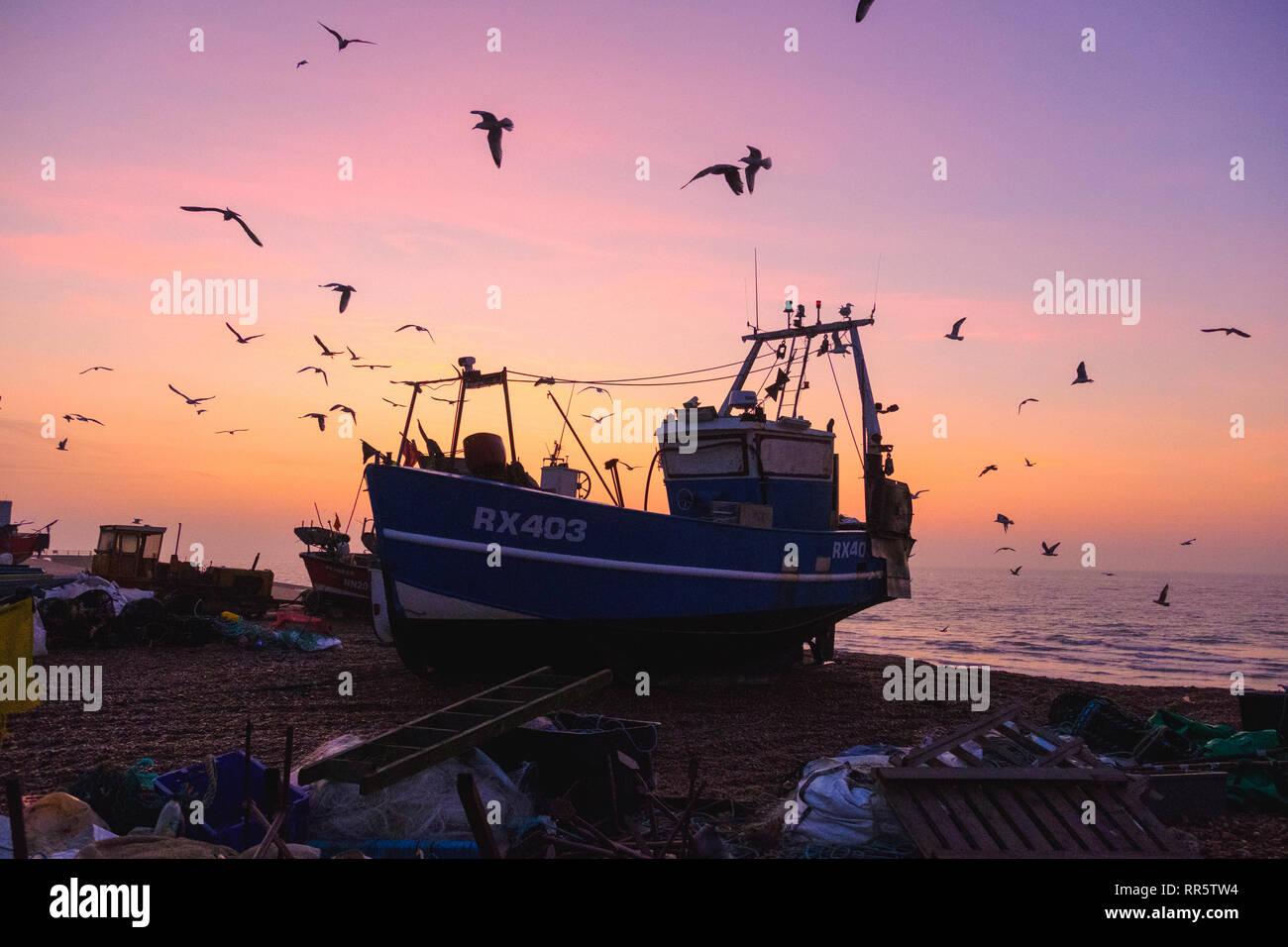 Hastings, East Sussex, UK. 23 février 2019. Mouettes ronde swirl Hastings un bateau de pêche au lever du soleil sur la vieille misty Stade ville plage bateau de pêche. Photo Stock