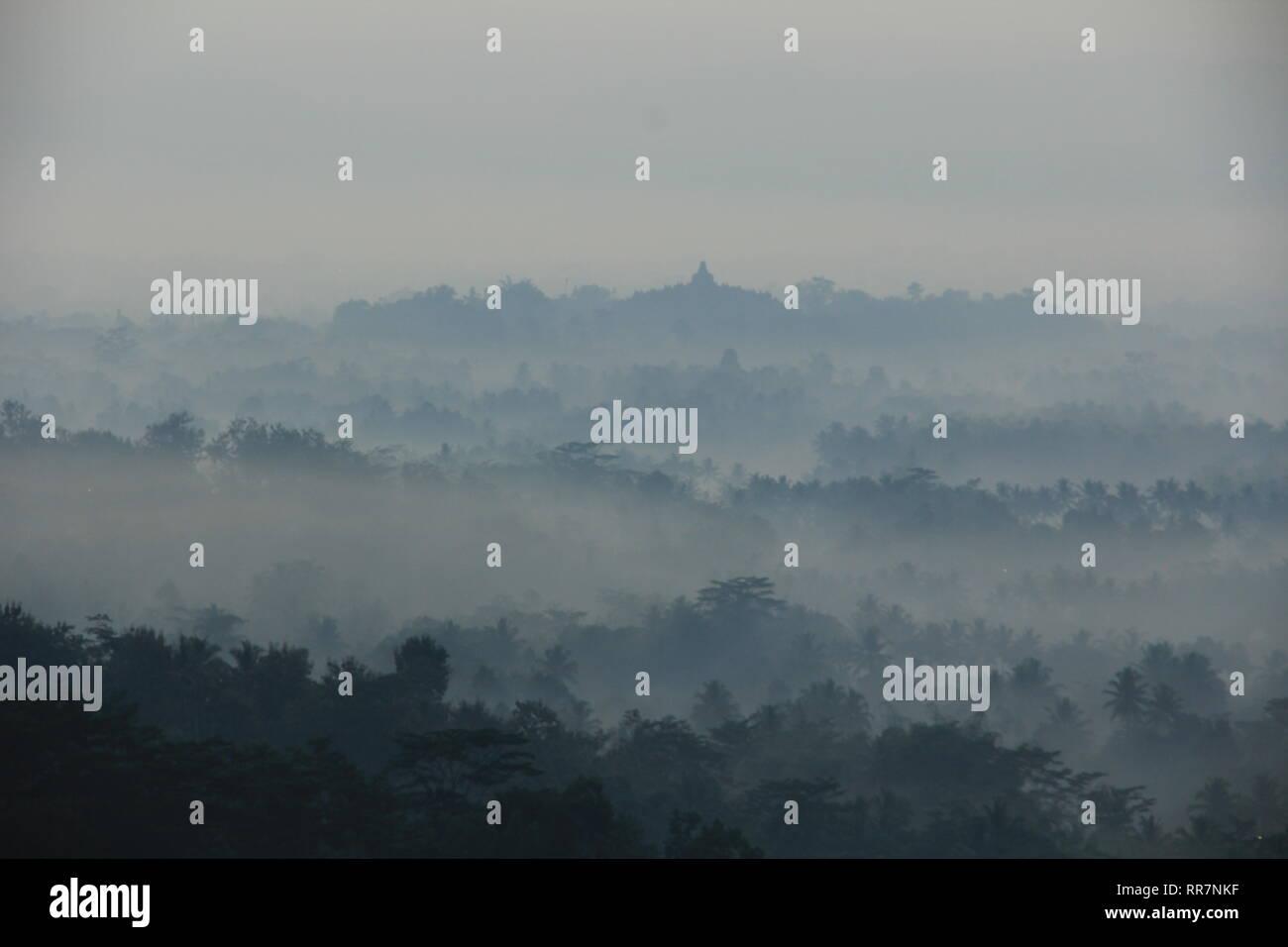 Kabut Phuntuk Setumbu di hari pagi Photo Stock