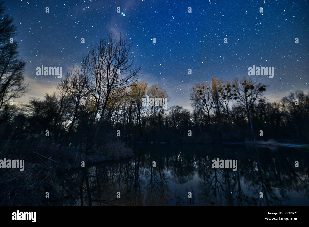 Night Sky Stars Forest River Photo Stock