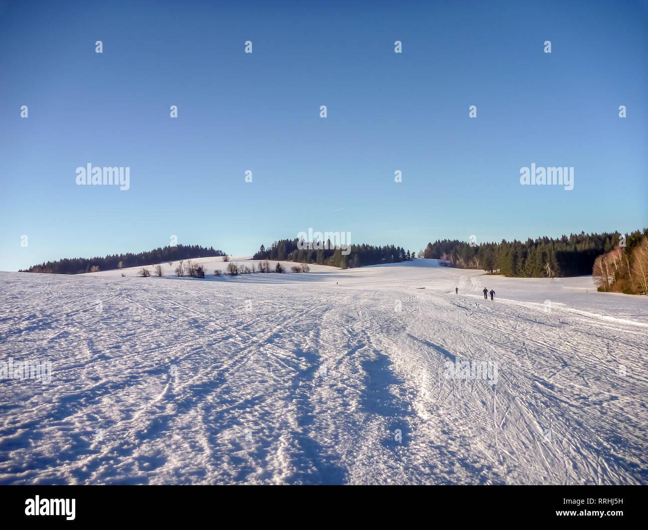 Des sentiers de ski nordique près de Nove Mesto gratuit tchéco-morave, highlands, République Tchèque Banque D'Images