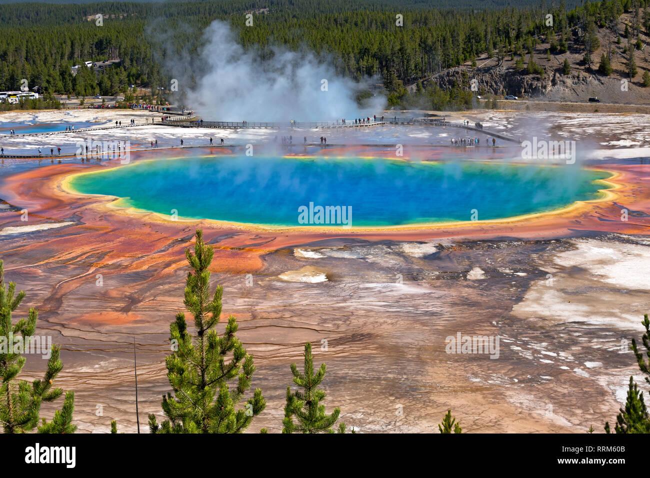 WY03861-00...WYOMING - Le Grand Prismatic Spring colorés Midway Geyser Basin dans le Parc National de Yellowstone. Banque D'Images
