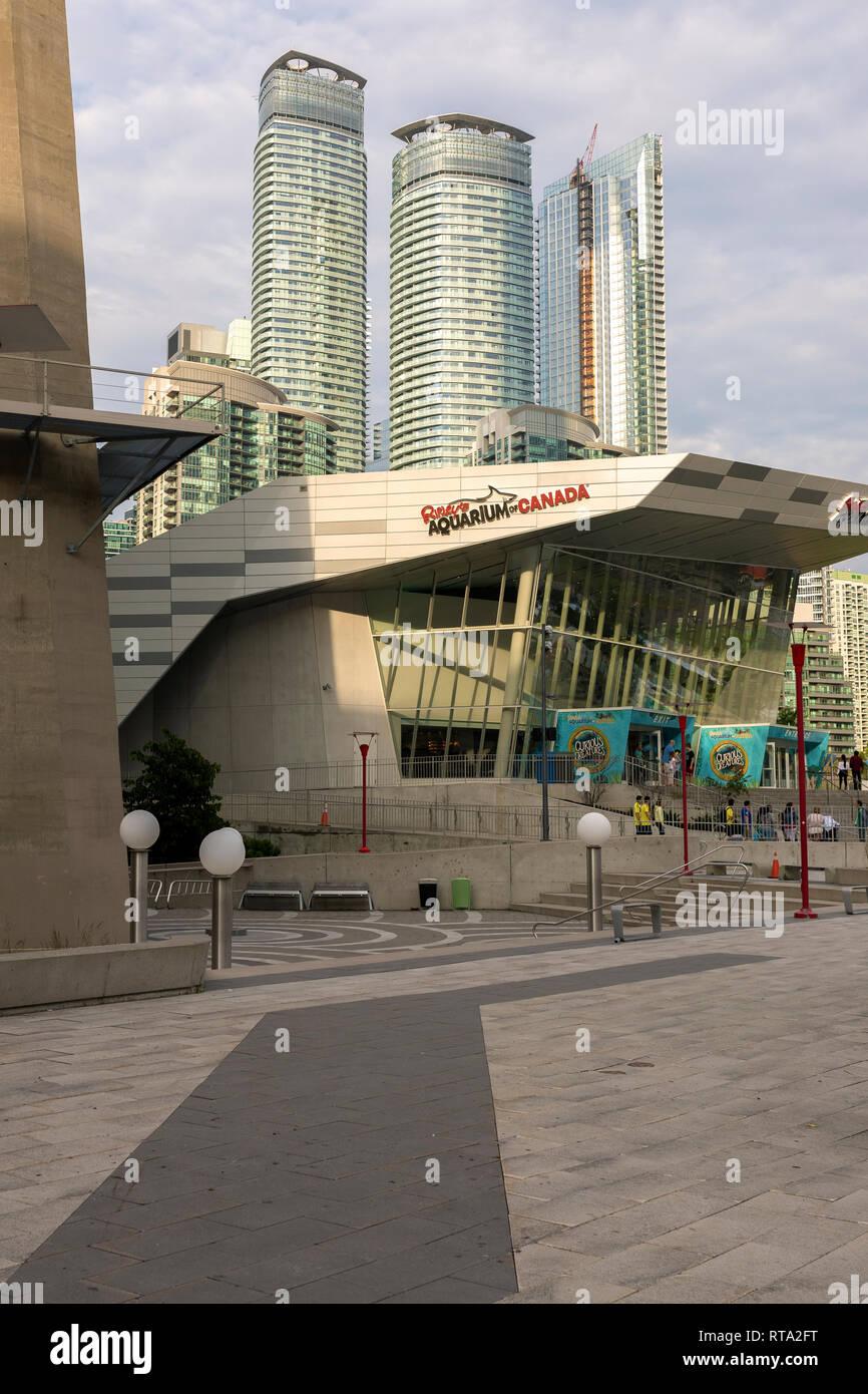 TORONTO, ONTARIO, CANADA - 25 juin 2018: Ripley s Aquarium est une attraction populaire pour tous les groupes d'âge et les expositions détiennent plus de 20 000 s exotiques Photo Stock