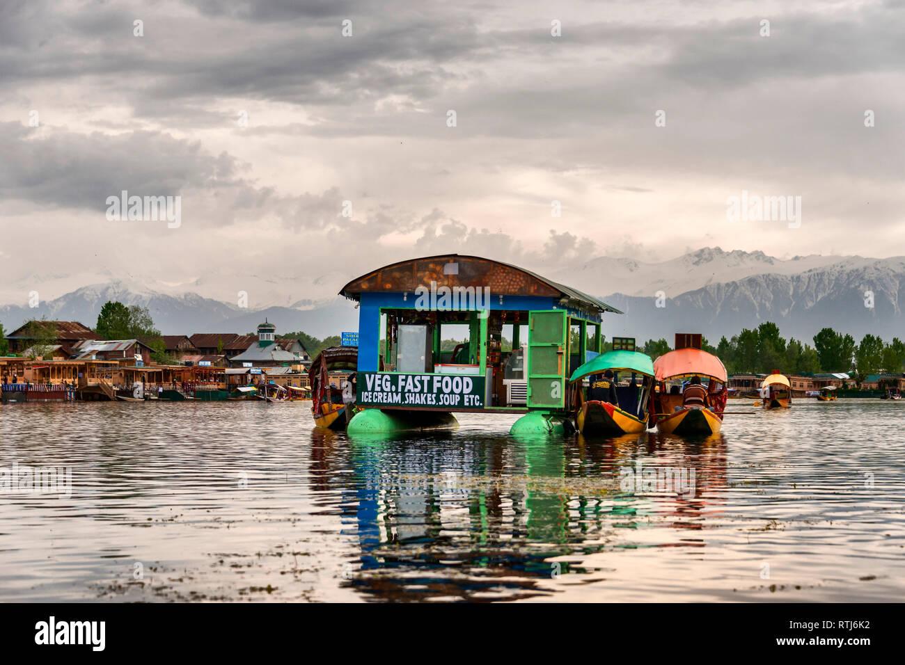 Dal lake, à Srinagar, Jammu-et-Cachemire, J&K, Inde Banque D'Images