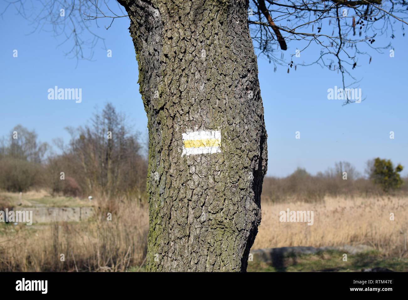 Sentier de randonnée pédestre marque sur arbre. Banque D'Images