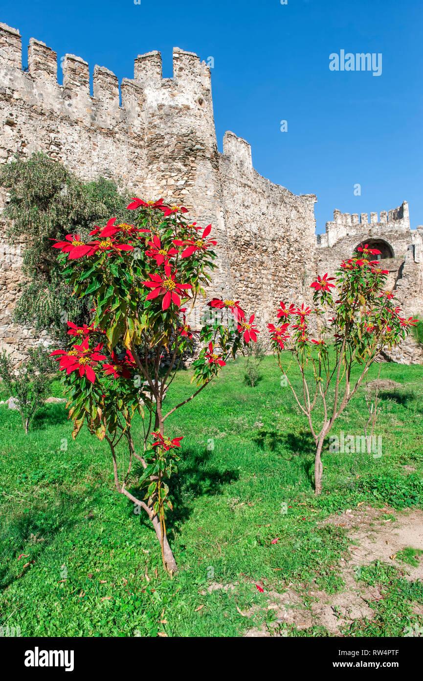 Anamur Mamure château, Anatolie, Turquie, au sud-ouest Banque D'Images