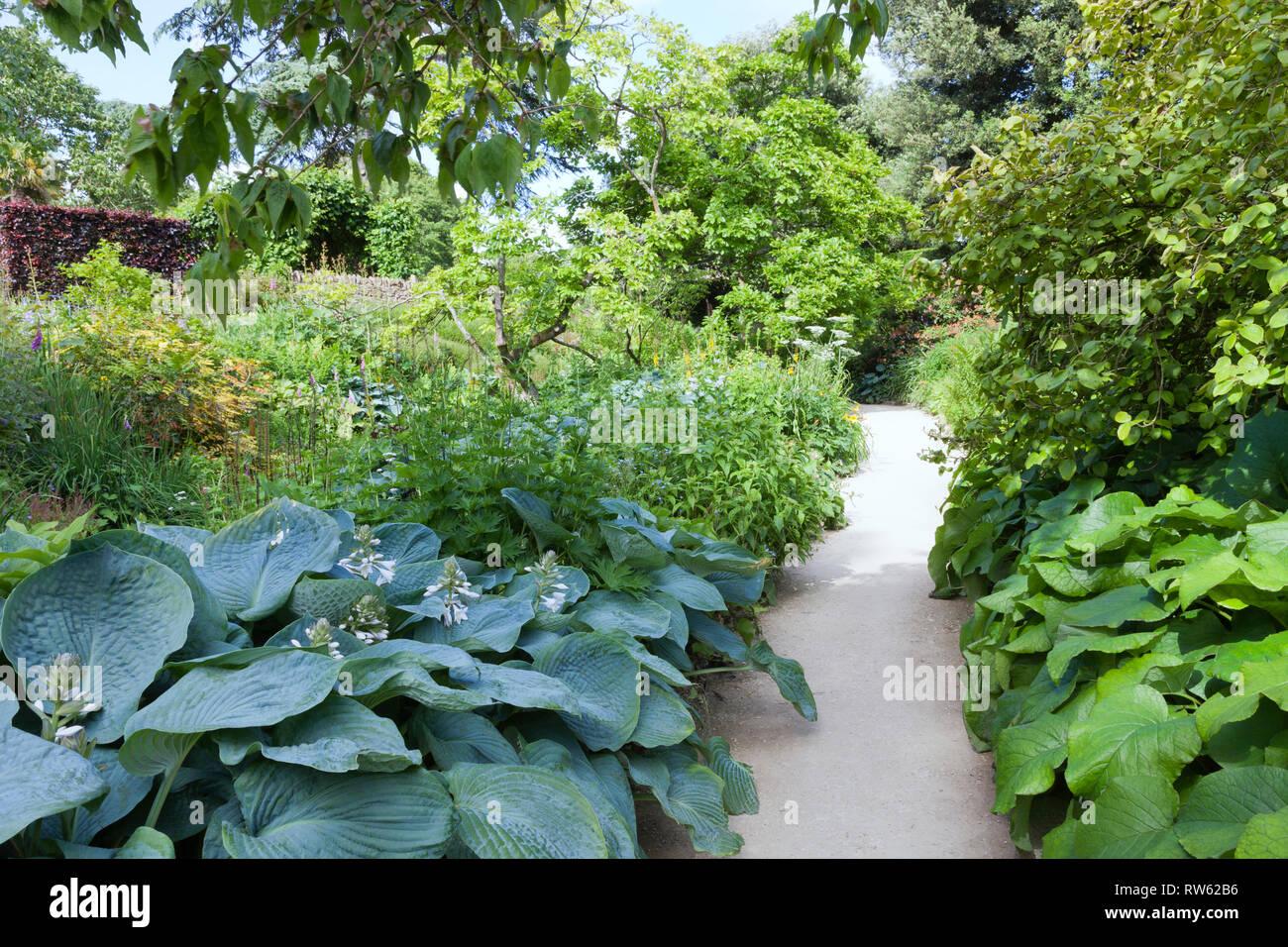 Chemin de gravier à travers les fleurs, arbustes et arbres dans un ...