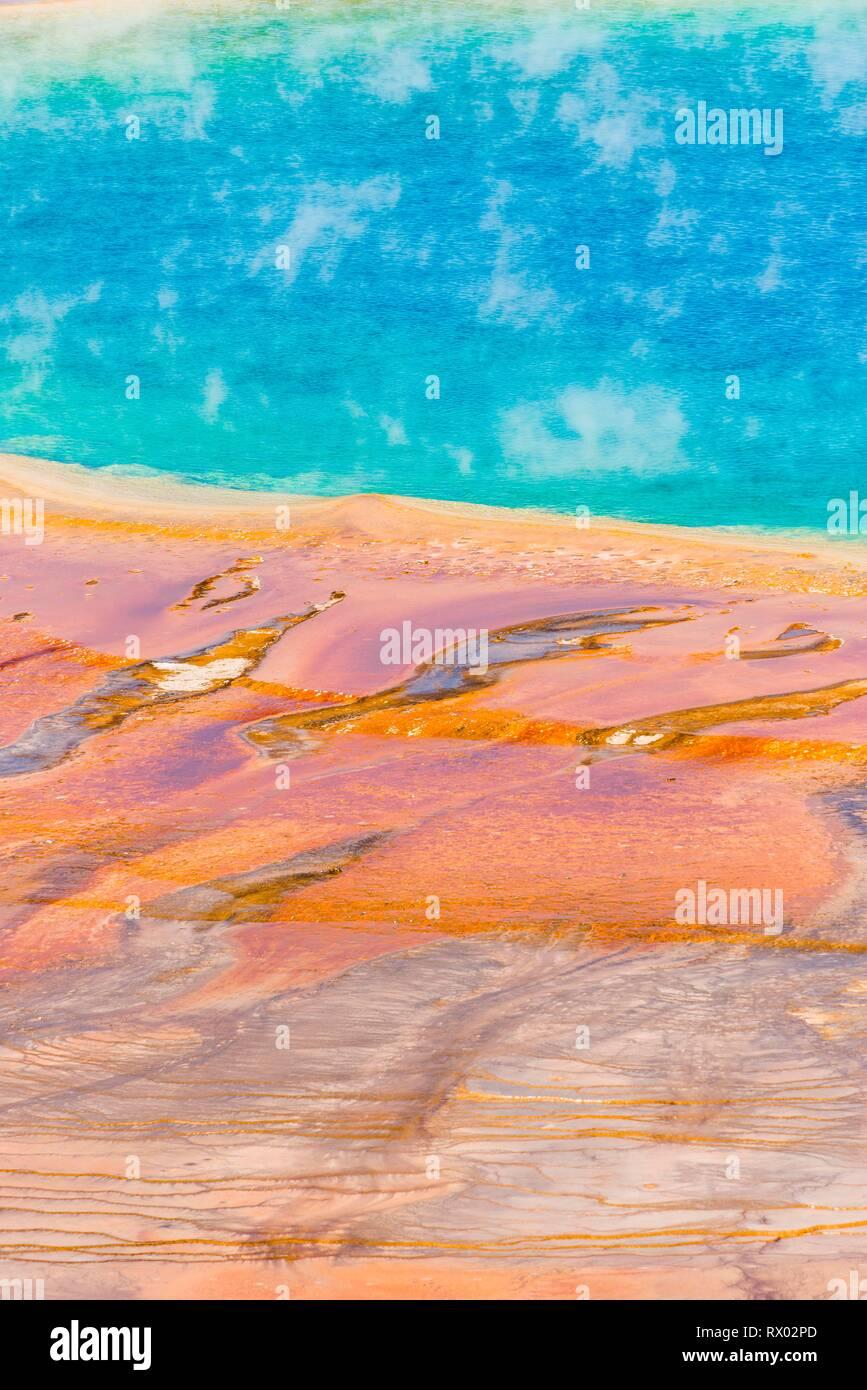 Les dépôts de minéraux colorés au bord sr la vapeur chaude du printemps, photo détail, Grand Prismatic Spring, Midway Geyser Basin Banque D'Images