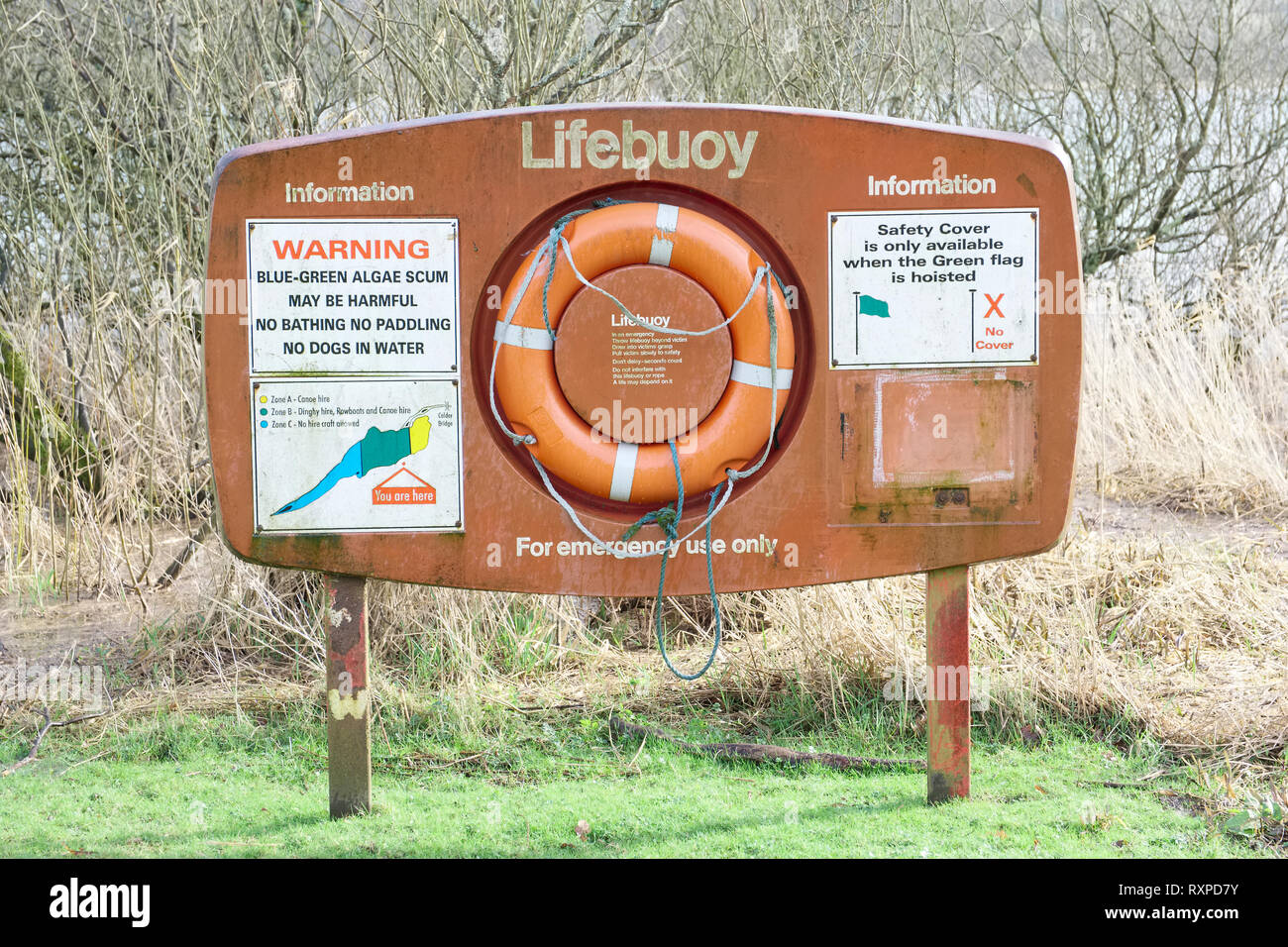 Réserve naturelle de bouée d'avertissement d'algues à Lochwinnoch Banque D'Images