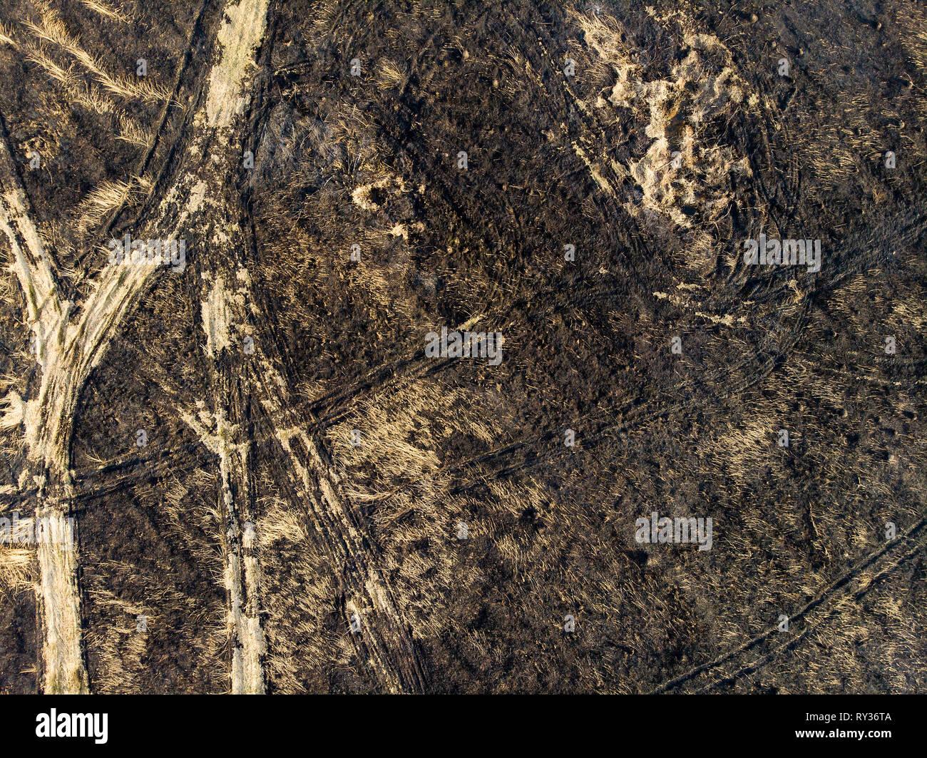 Terre dévastée, après un incendie. Les événements d'urgence et de catastrophes Photo Stock