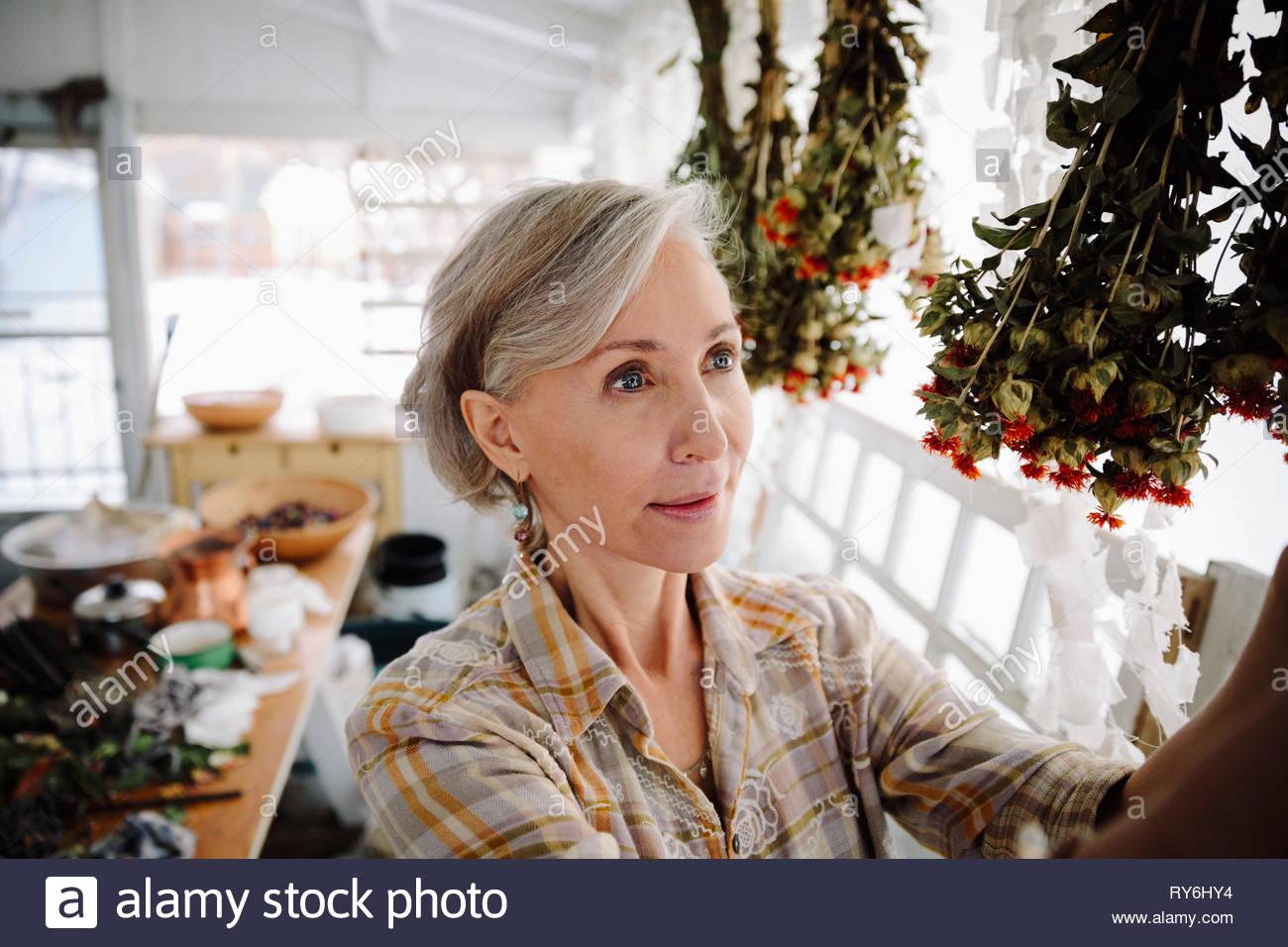 Artiste féminine senior fleurs de séchage en studio Photo Stock