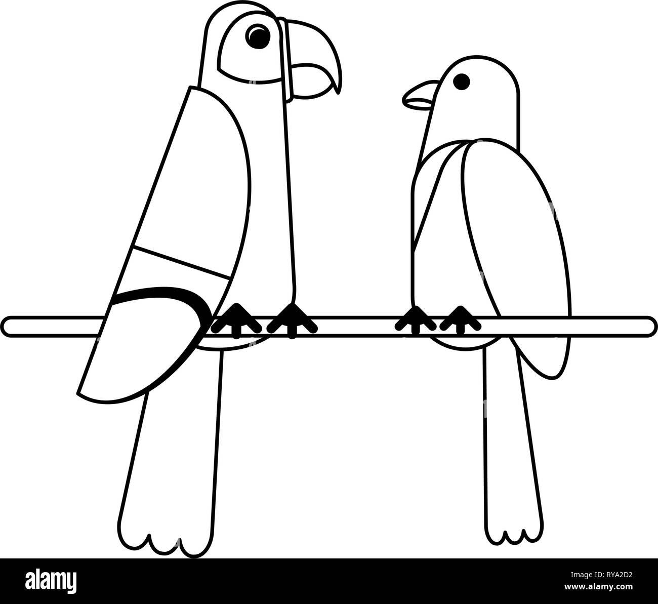 Oiseaux Exotiques Dessins Animés En Noir Et Blanc Vecteurs